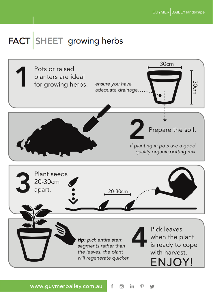 Guymer Bailey Growing Herbs