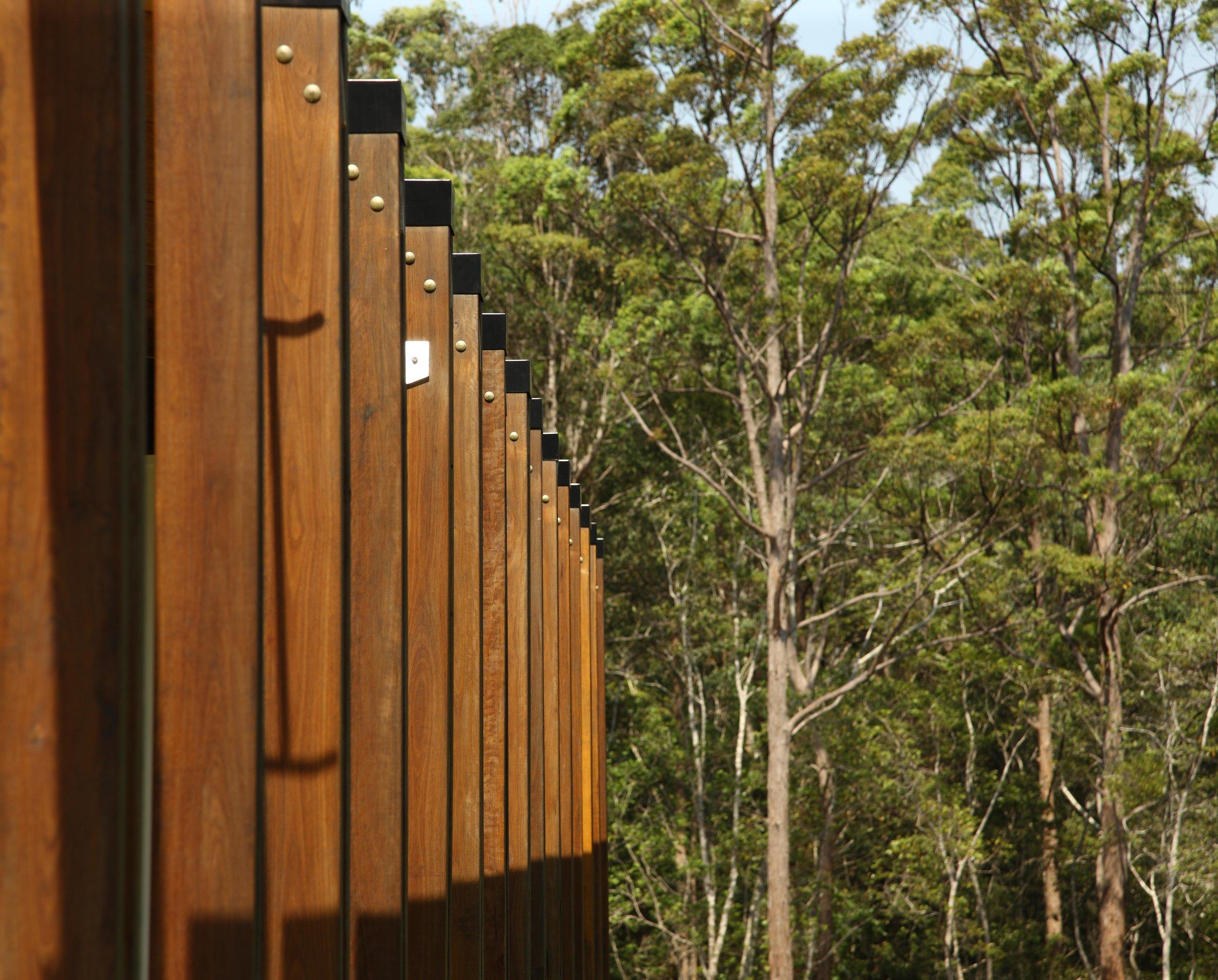 Maroochy-Botanic-Gardens-Guymer-Bailey-Landscape-11.jpg