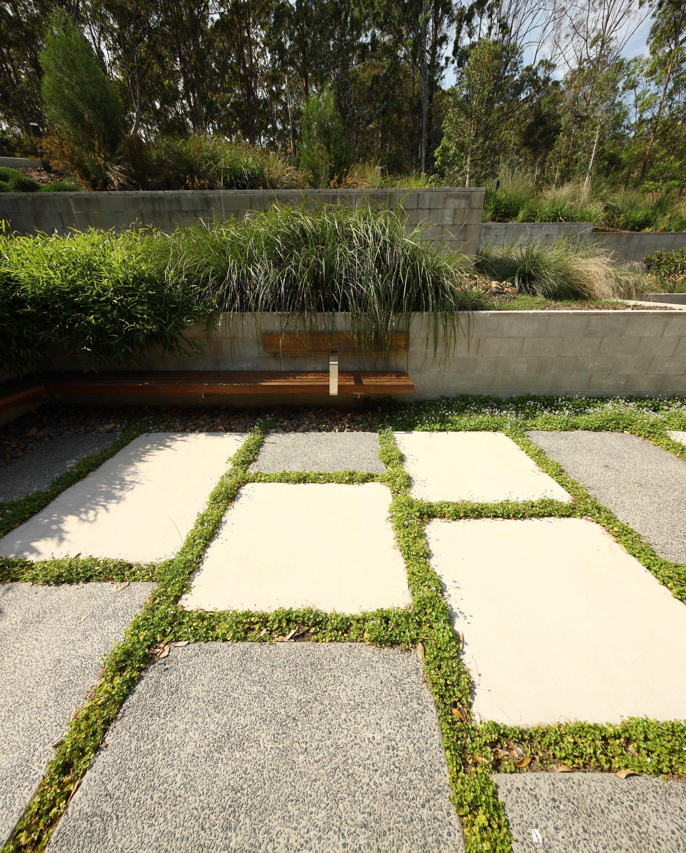 Maroochy-Botanic-Gardens-Guymer-Bailey-Landscape-10.jpg