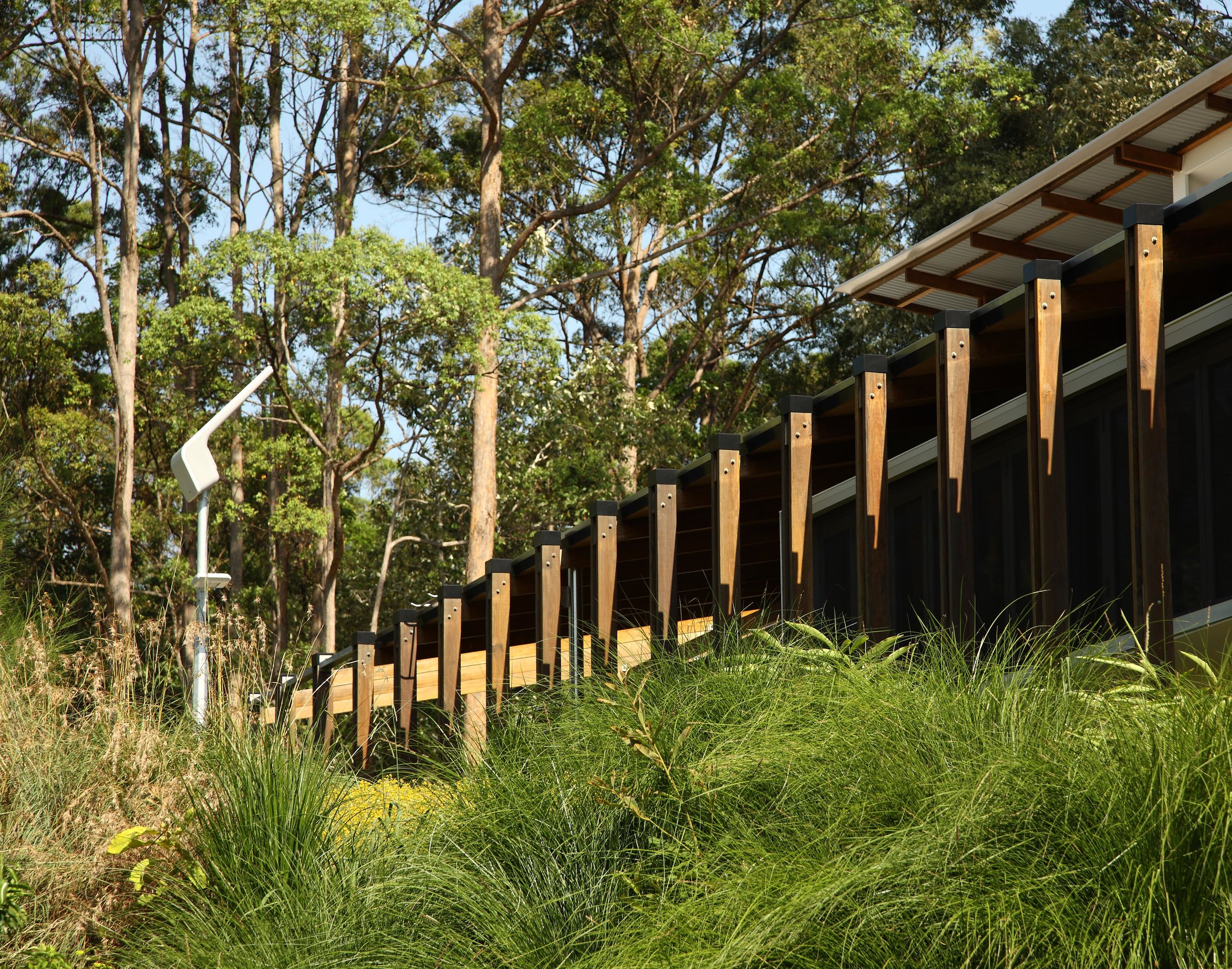 Maroochy-Botanic-Gardens-Guymer-Bailey-Landscape-12.jpg