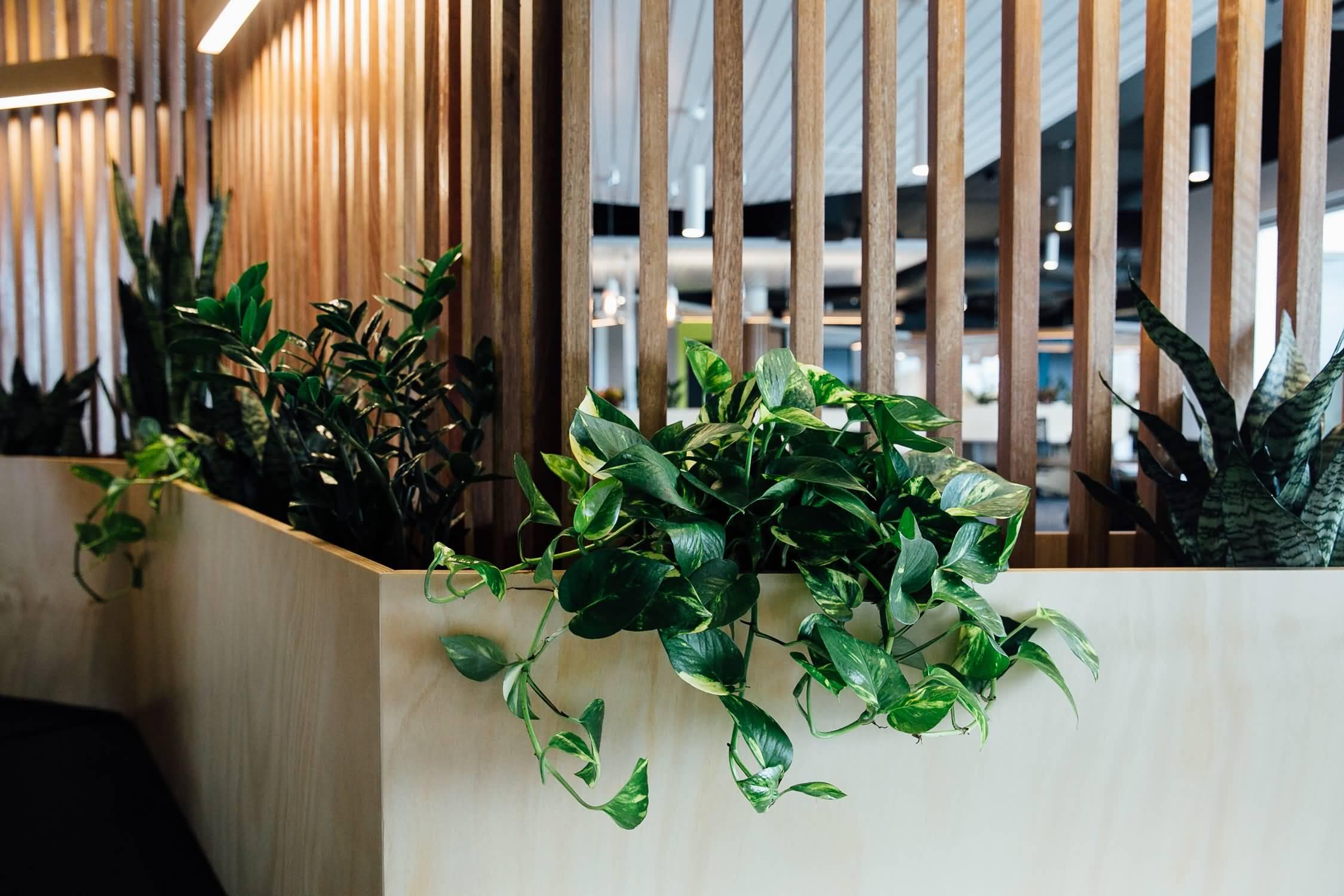 Guymer-bailey-architects-inbox-workspace-interiors-04.JPG