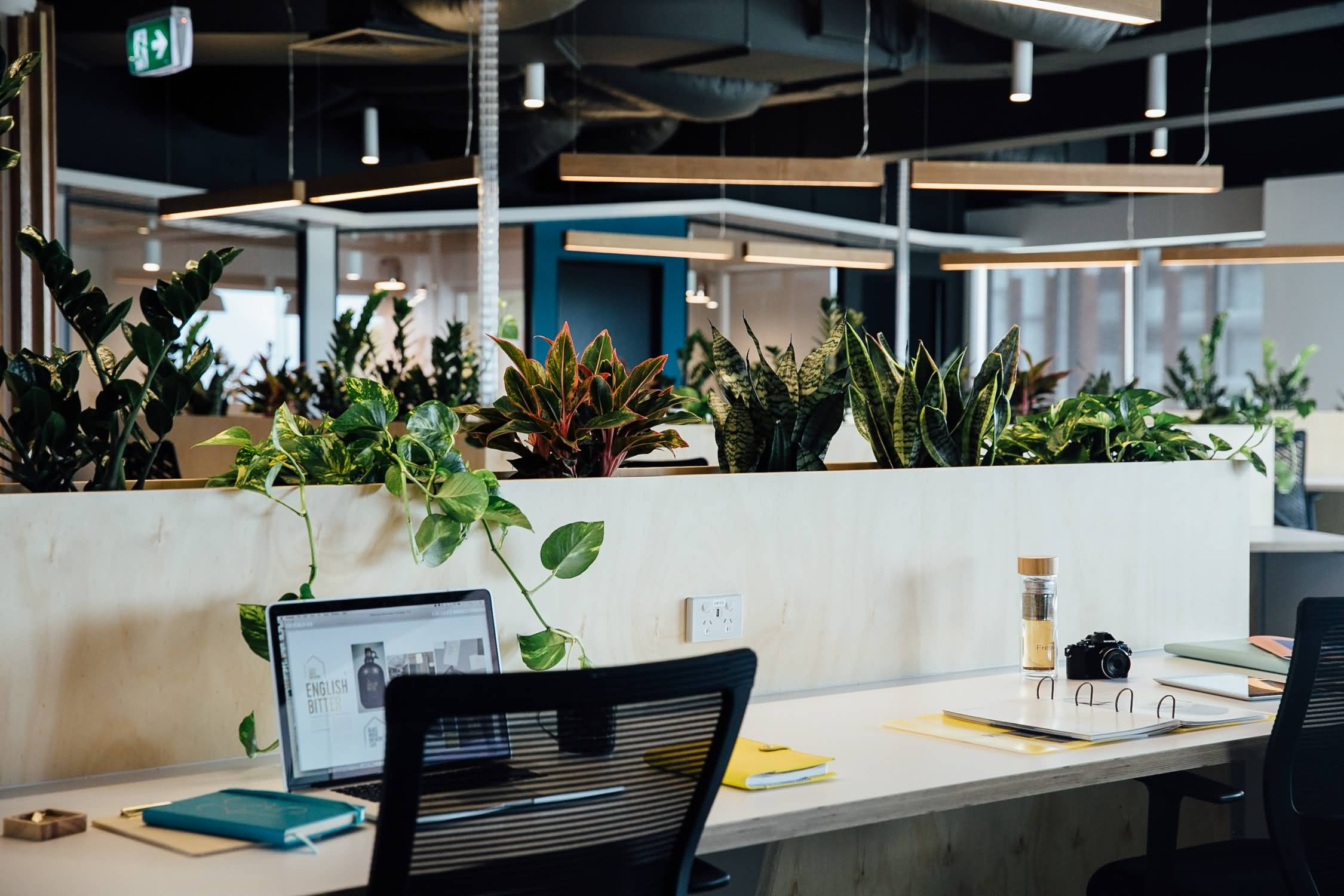 Guymer-bailey-architects-inbox-workspace-interiors-03.JPG