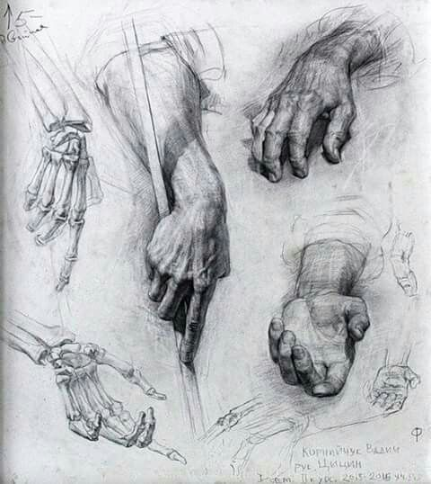 61940953824731ac00969fea9e128fd6--beaux-arts-anatomy.jpg