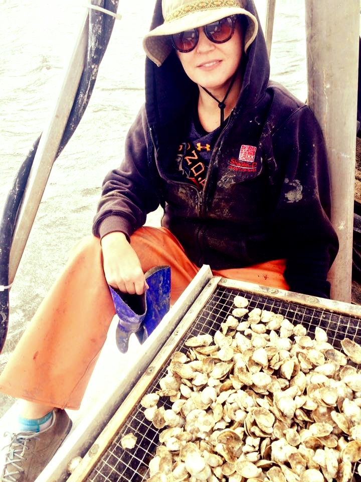 Oyster Research