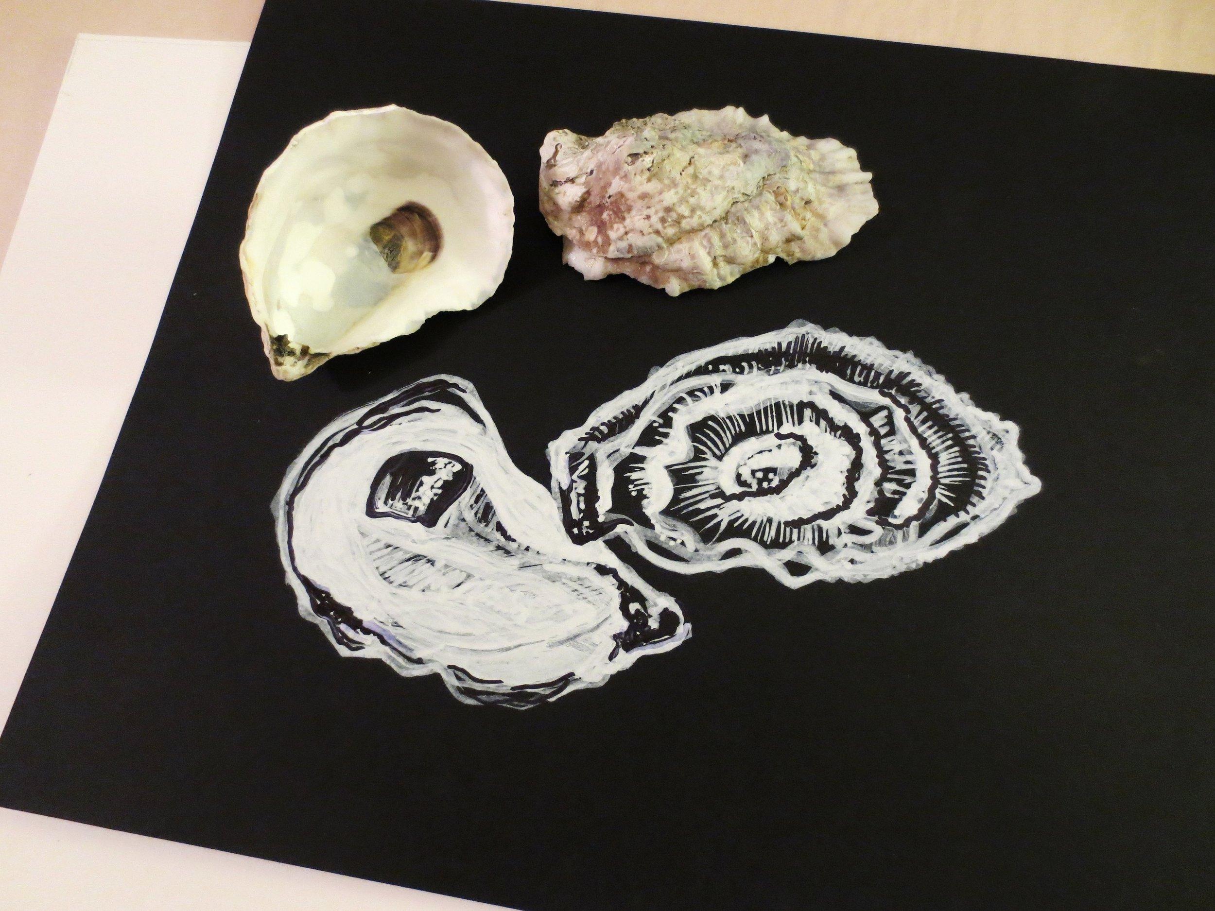 Oyster Study on black (in progress)