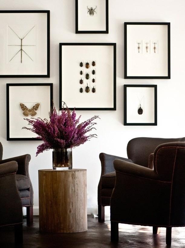 Sean Anderson Design.JPG