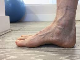 Short Foot Exercise -