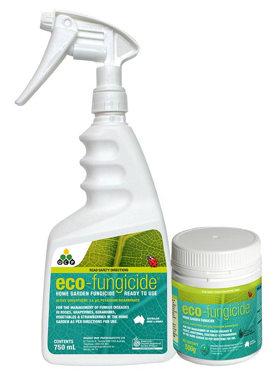 eco-fungicide-group-LR.jpg