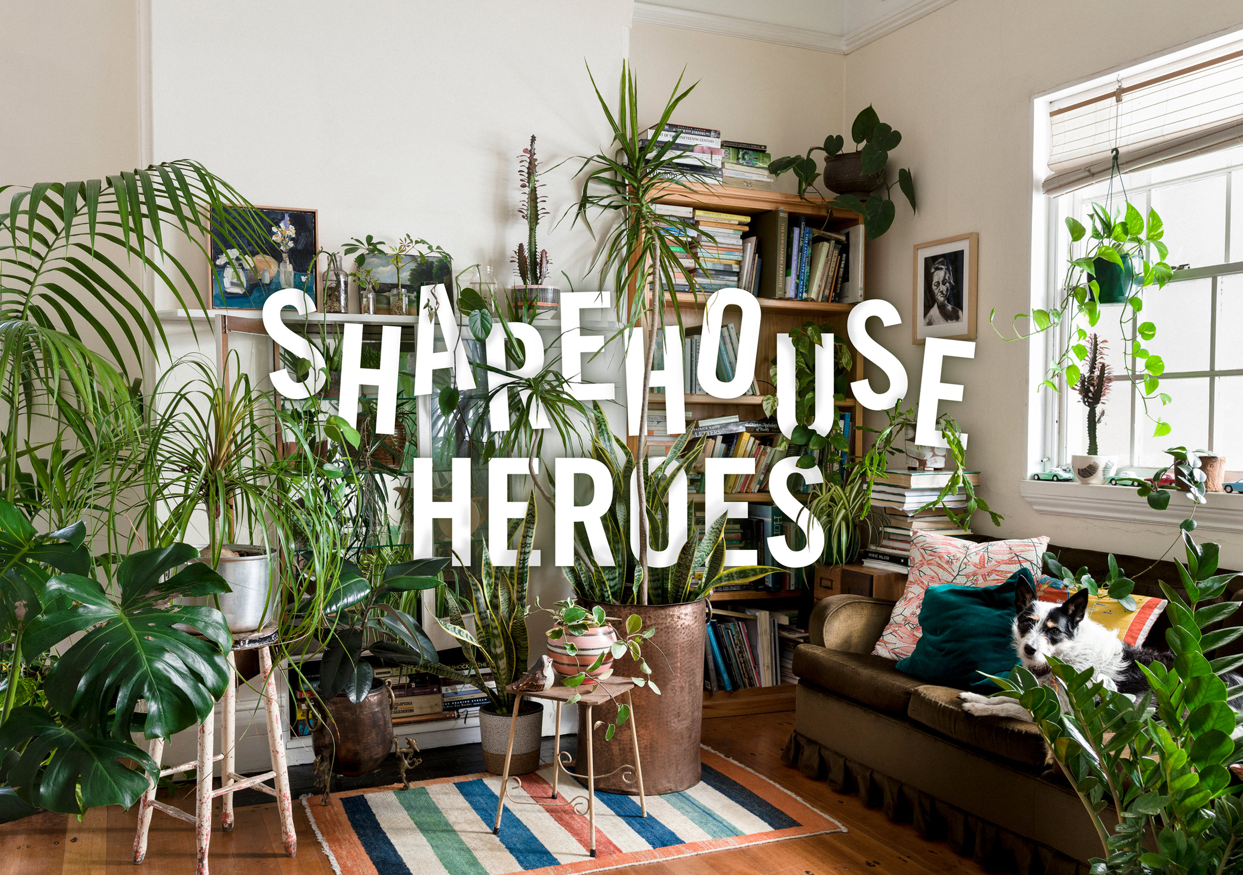 Sharehouse Heroes - As eclectic as your housemates, this moveable garden features a cool collection of low maintenance plants that won't keep you from partying on Saturday night.