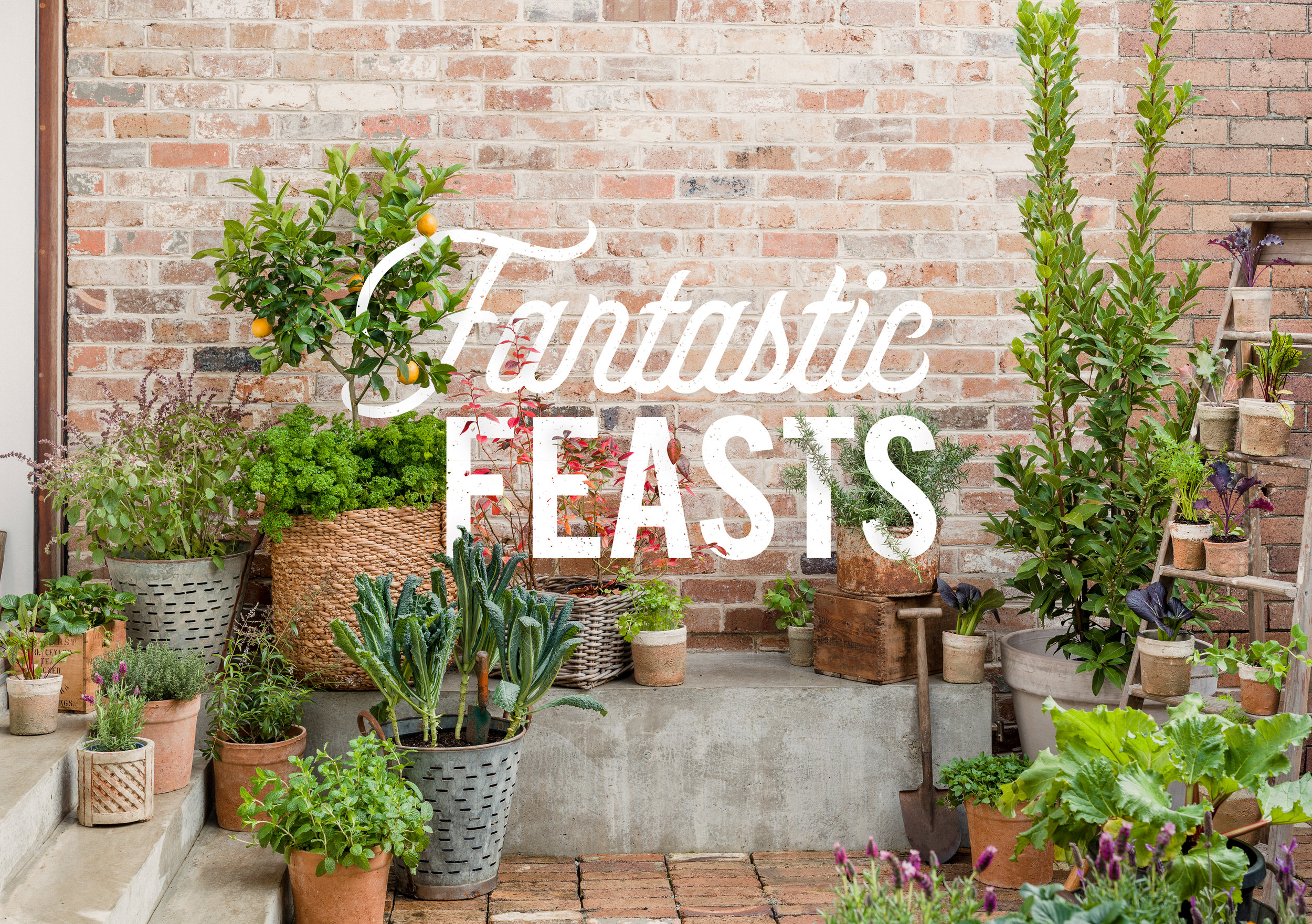 Fantastic Feasts - Created to look and taste great, this will get you growing your own in style. So pull on your designer wellies and prepare to enjoy the fruits (and veggies) of your labours.