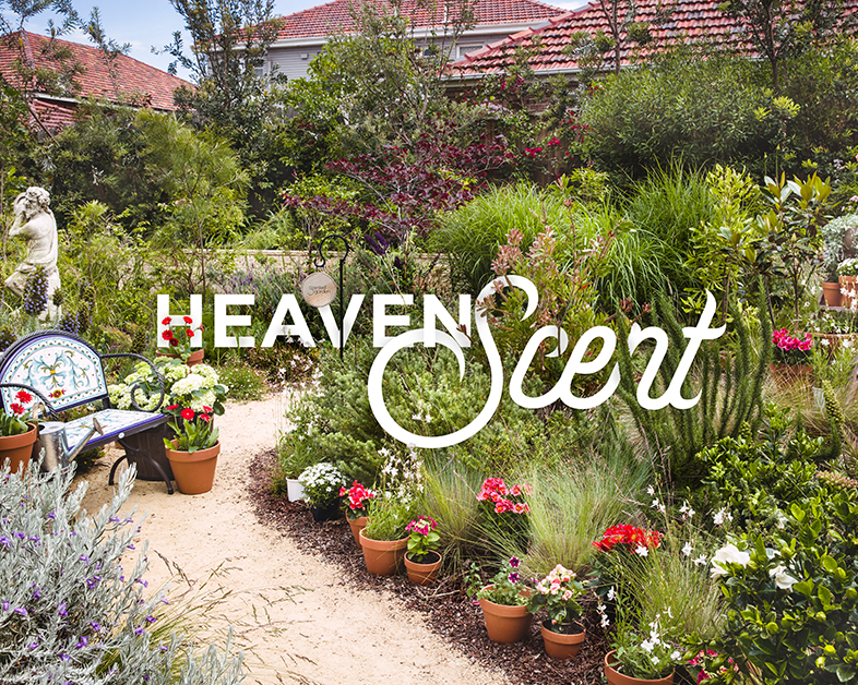 Heaven Scent - Fragrant, flowering plants and ornamental treasures transform a garden path into a sensory utopia. It's utterly divine!