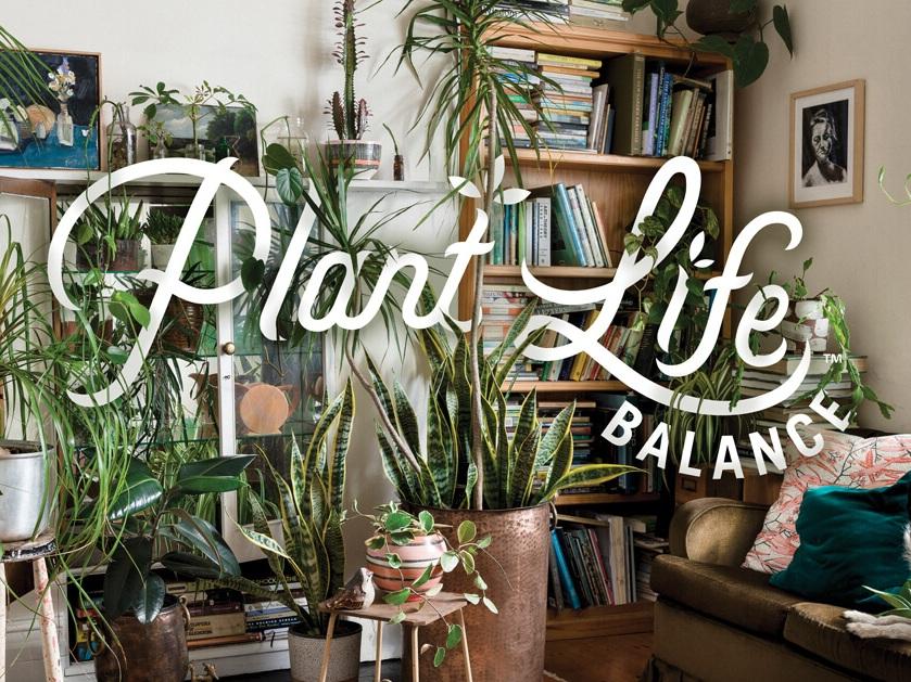plantlifebalance.jpg
