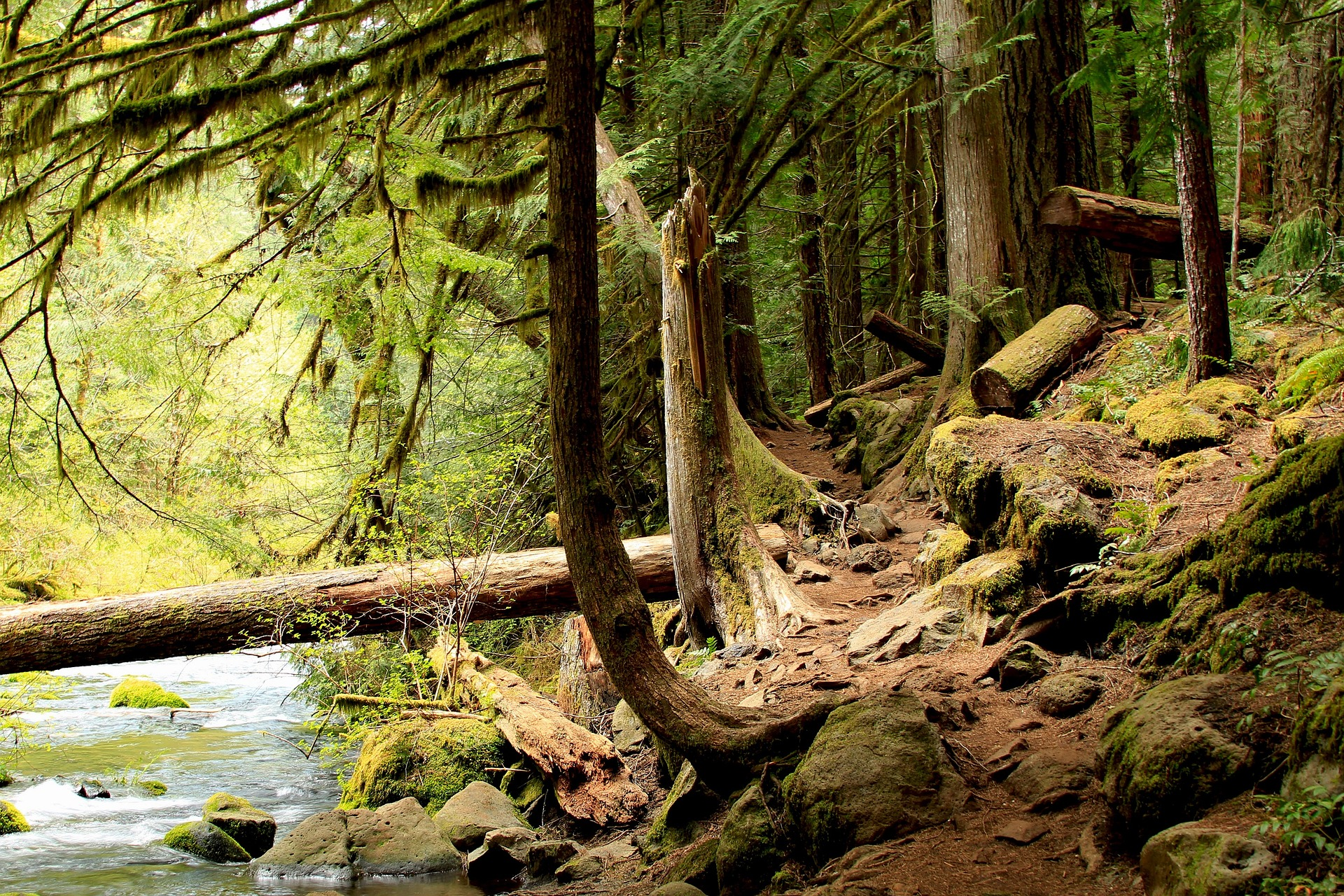 Sustainable Fitness Monthly Hikes -
