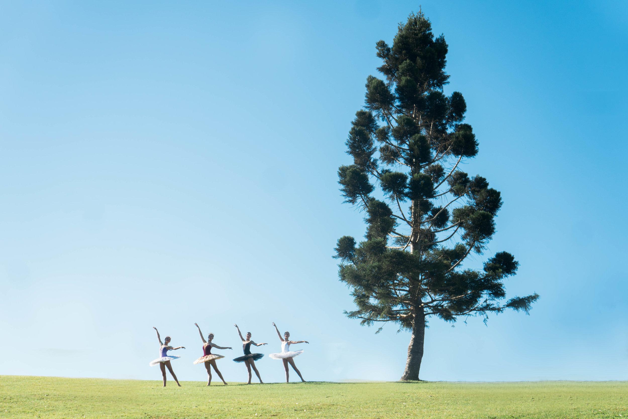 Hinterland-Dance-20.08.17-27.jpg