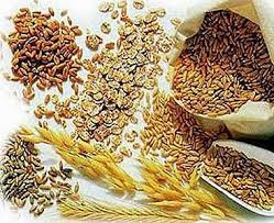 athlete carbohydrate diet