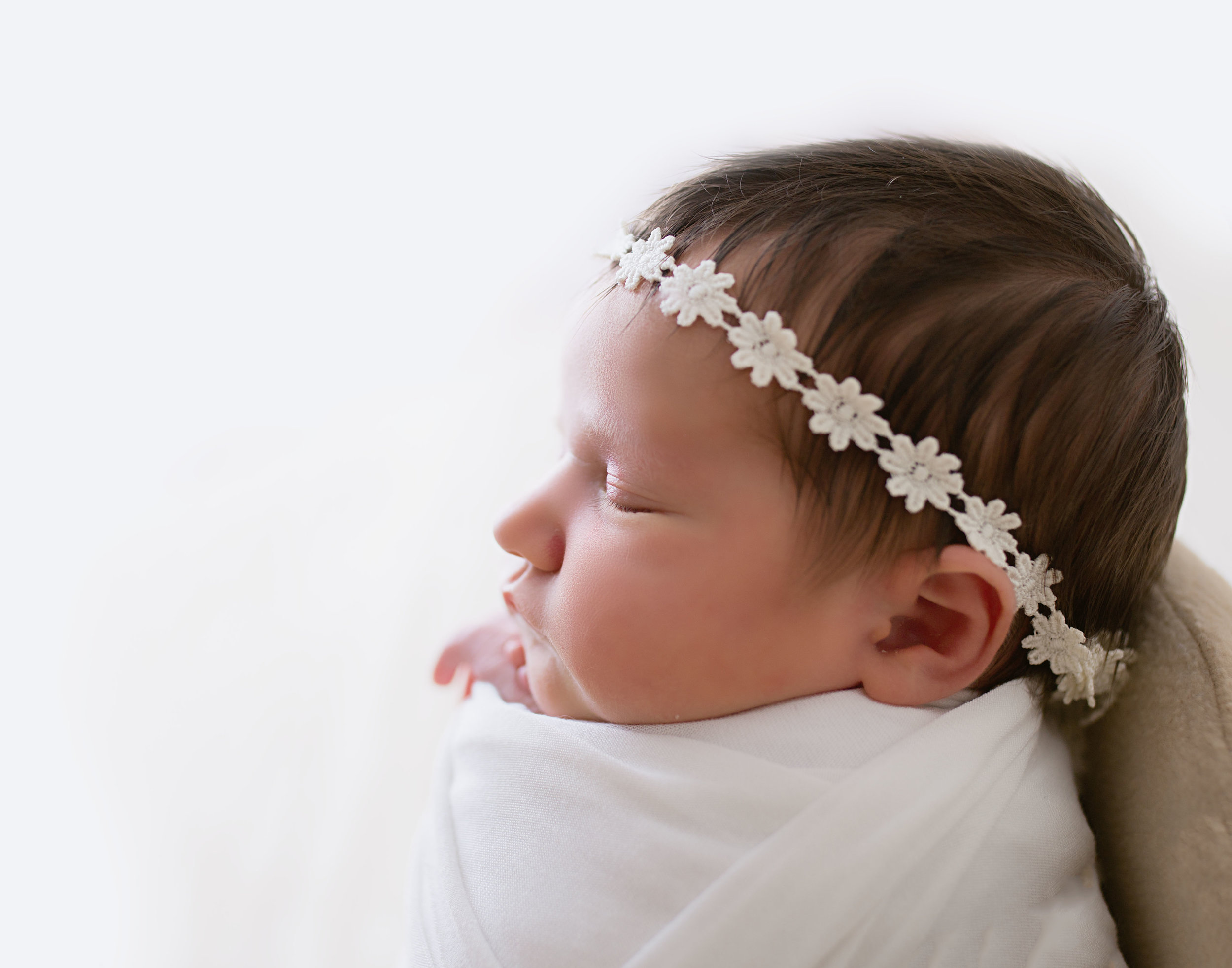 Liz - We've done newborn photos and a Christmas mini with Melissa so far. We will definitely be doing 1yr old pictures in a few months. I love the quality of her photography and her style. She's very easy to communicate with, and quick to get your pictures to you.