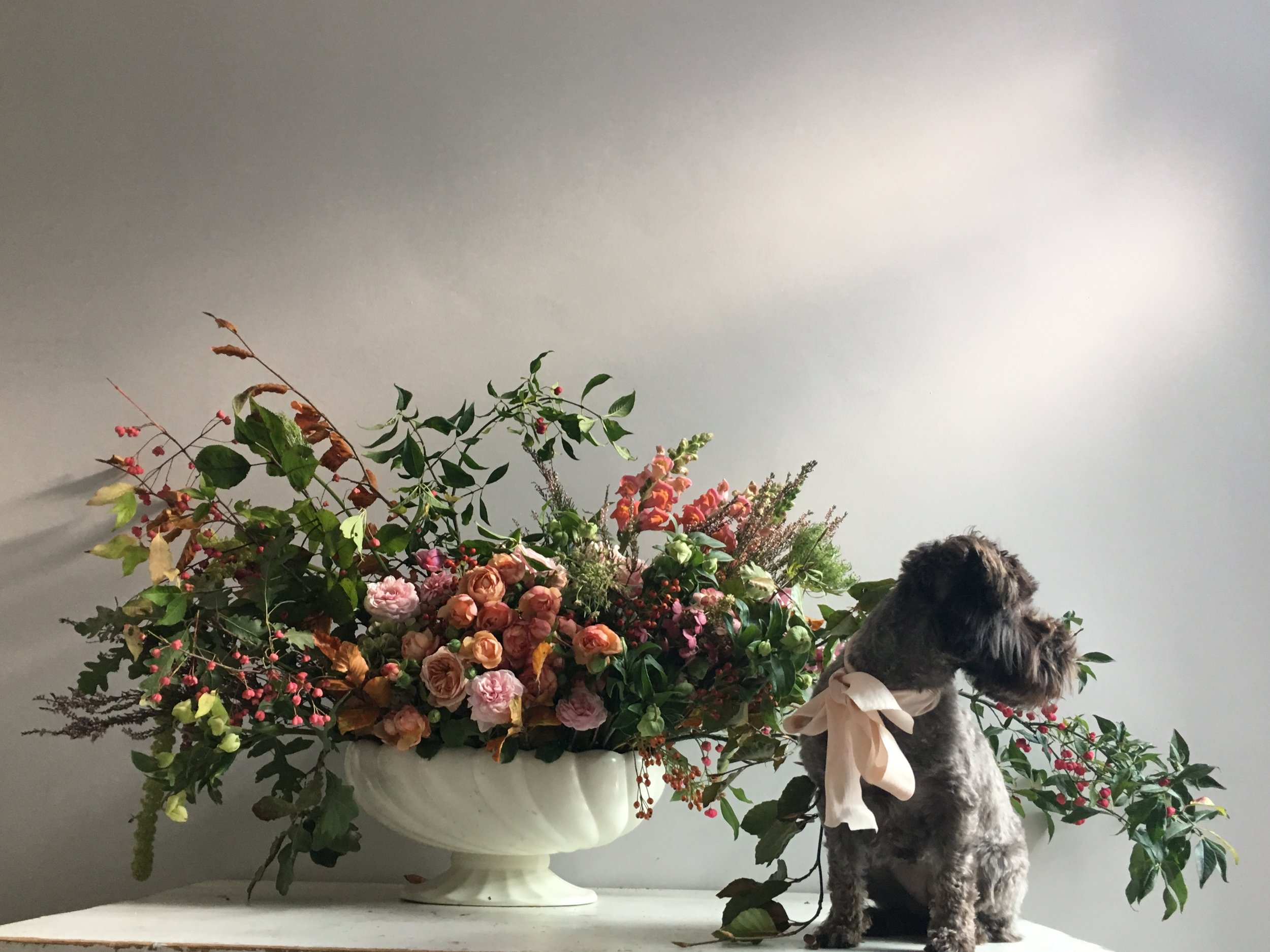 Hilda posing with a September arrangement   Flowers by: Honeysuckle and Hilda  Photo by: Claire Bowen