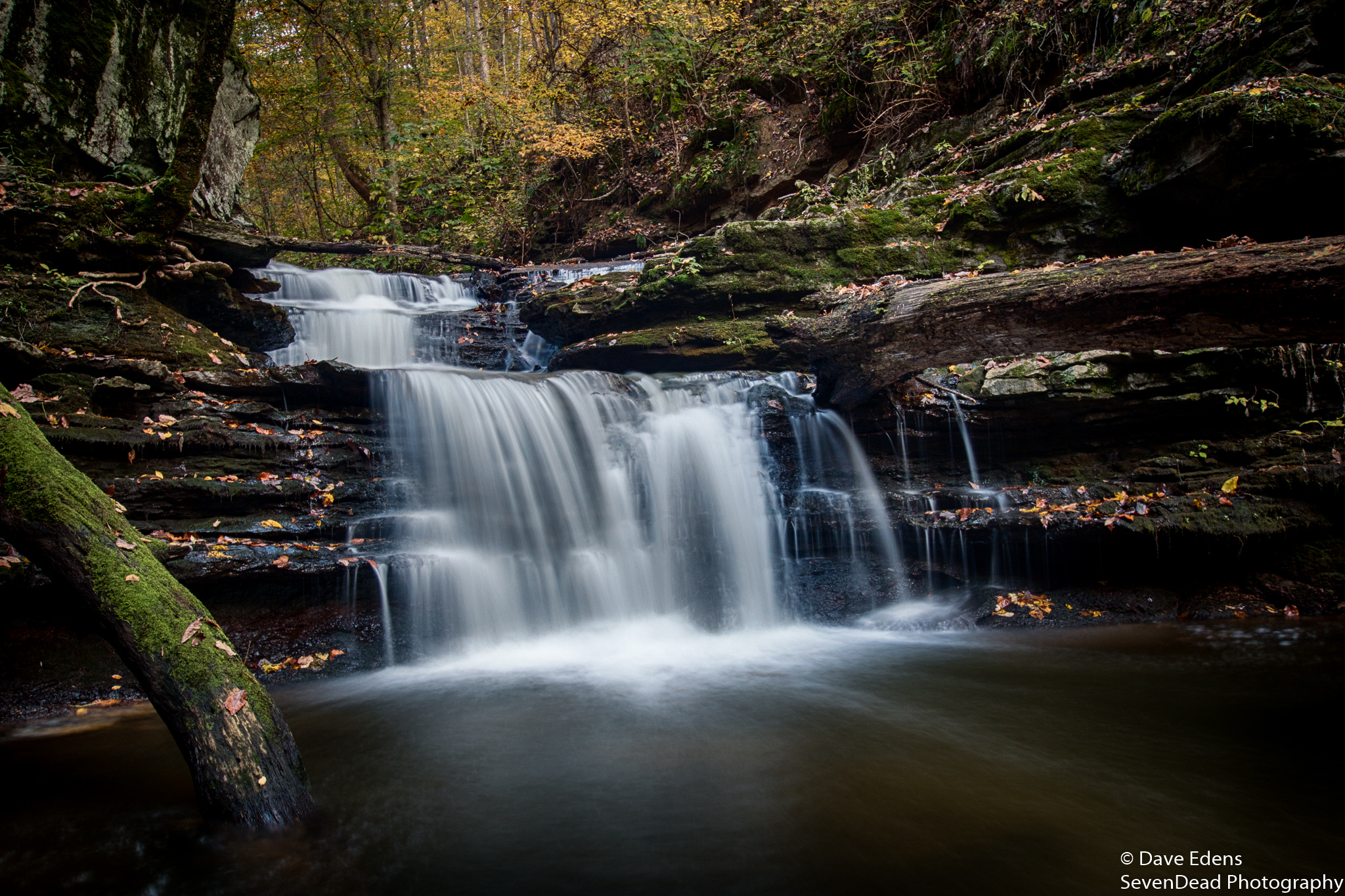 bucks pocket state park 1.jpg