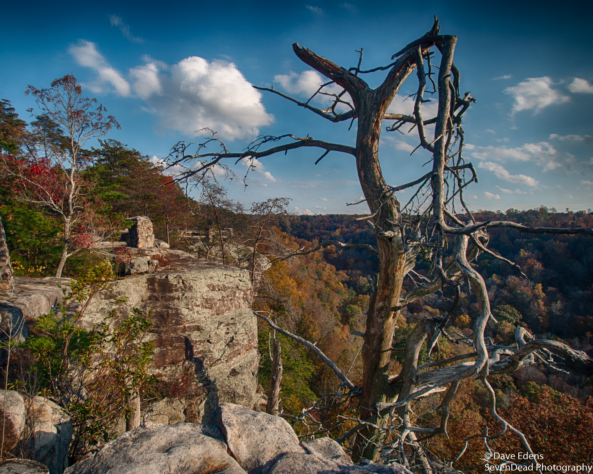 bucks pocket state park 2.jpg