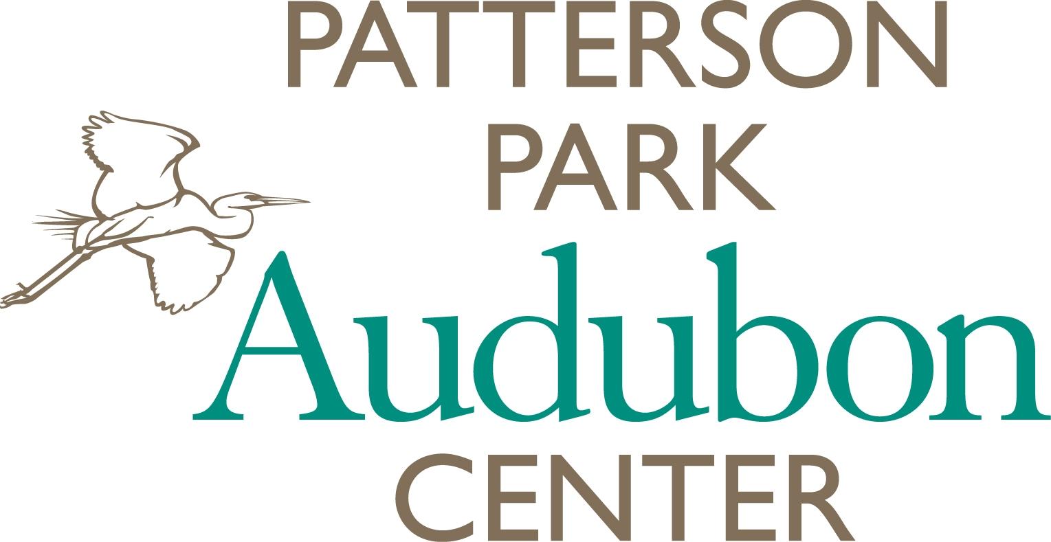 Patterson Park Color.JPG