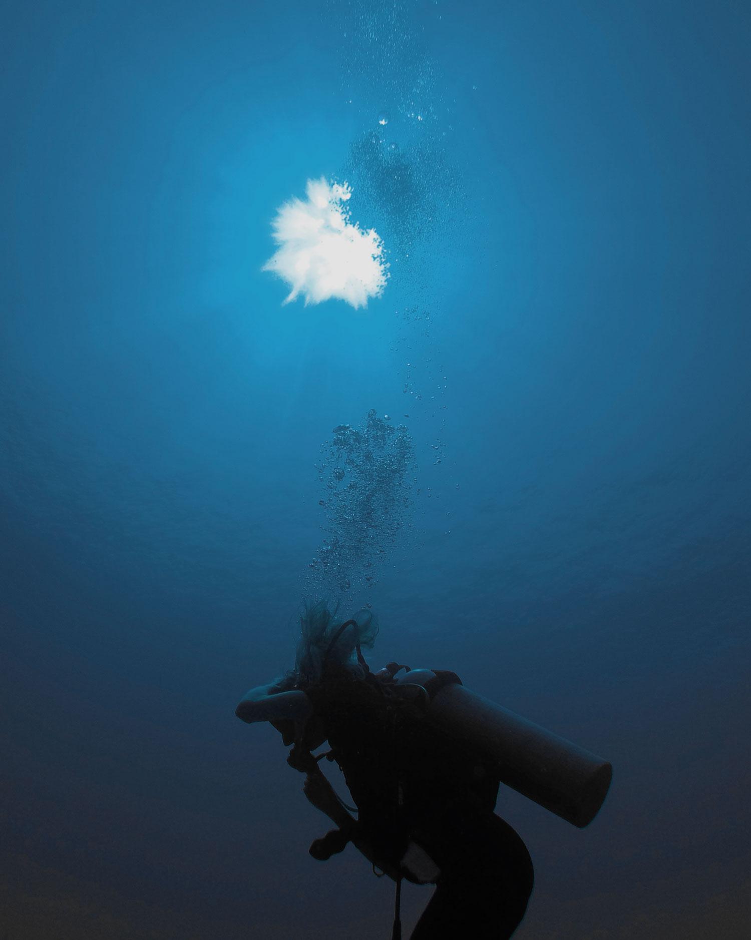 Silke Bonde diving