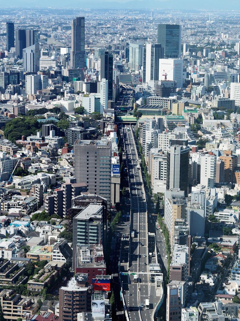 tokyo_silkebonde1.jpg