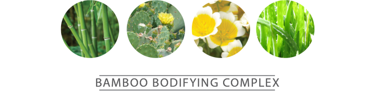 Bamboo Extract • Cactus Flower • Meadowfom Flower • Aloe Vera