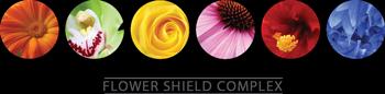 Calendula Flower • Blue Cornflower • Red Hibiscus Flower • Green Orchid Flower • White Gardenia Flower • Yellow Rose Flower • Echinacea Flower