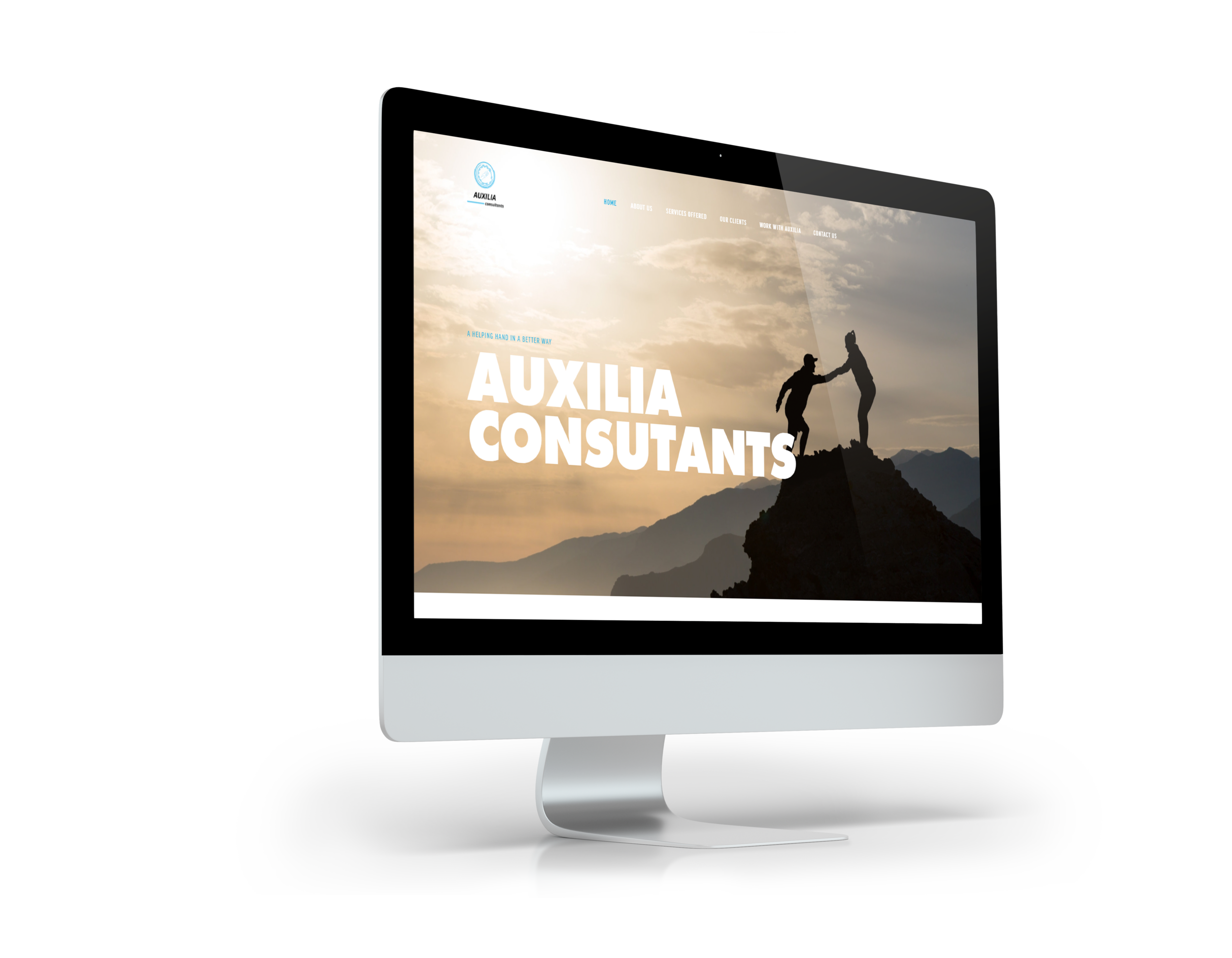 Auxilia Consultants  (Industry: Logistics & FMCG)