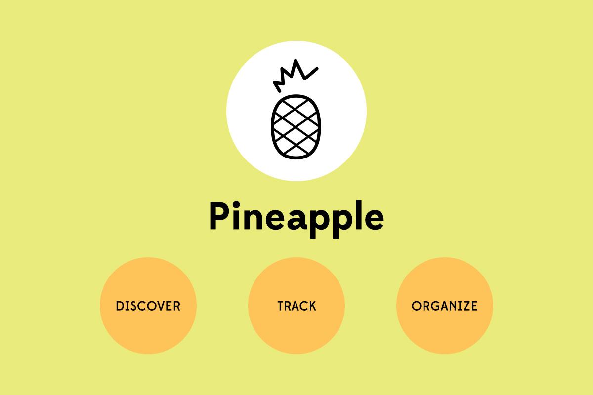 pineapple_squarespace.jpg