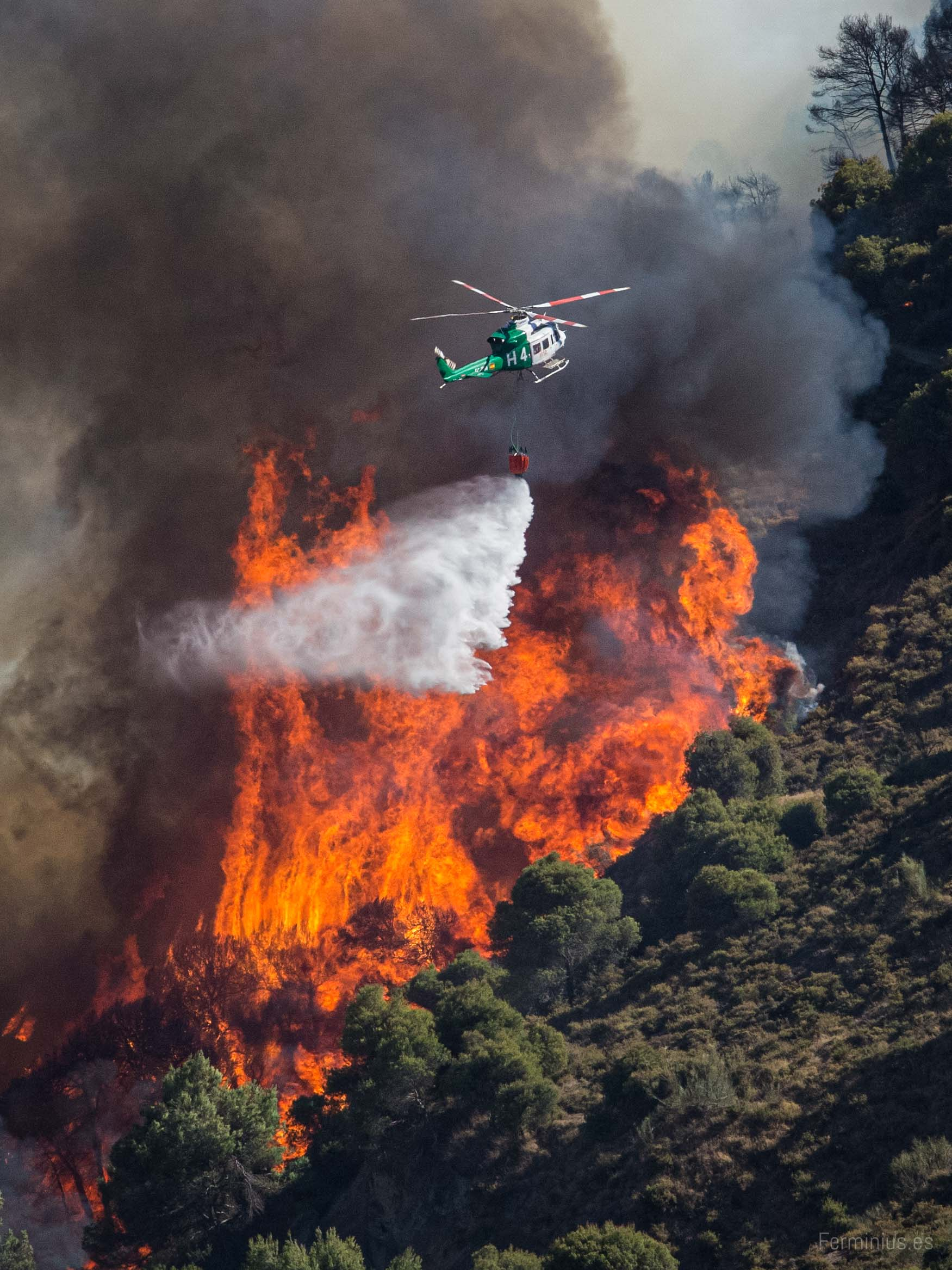 22/08/14 - Incendio forestal en Cenes de la Vega