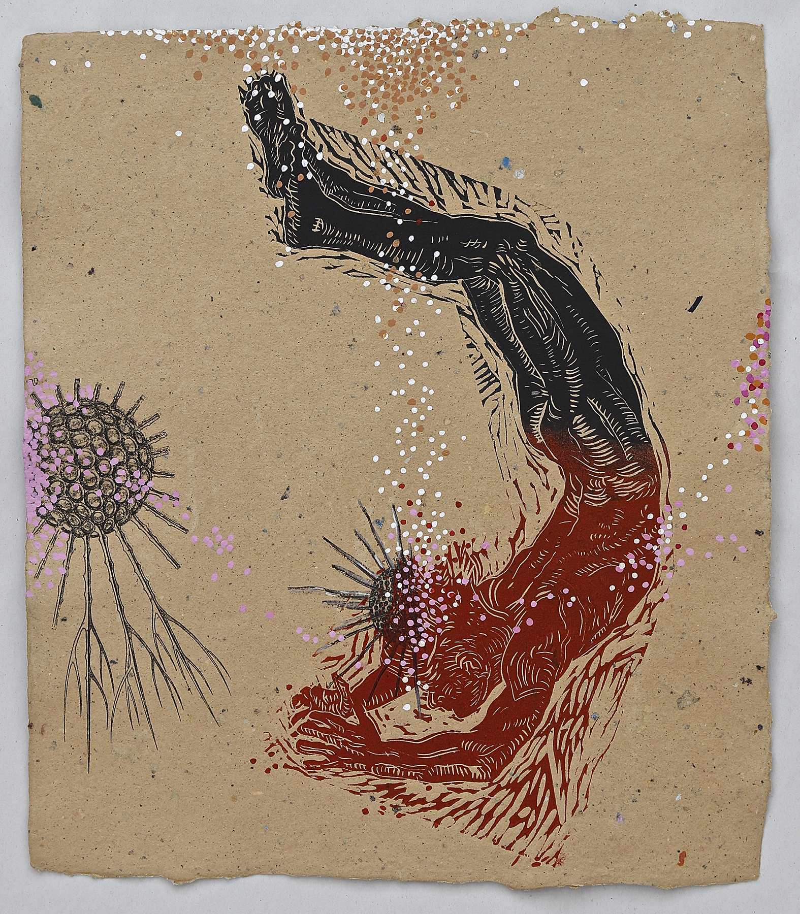 "Cladococcus Diver, 16x18"", linocut, transfer, and hand-painting on handmade paper, $350"