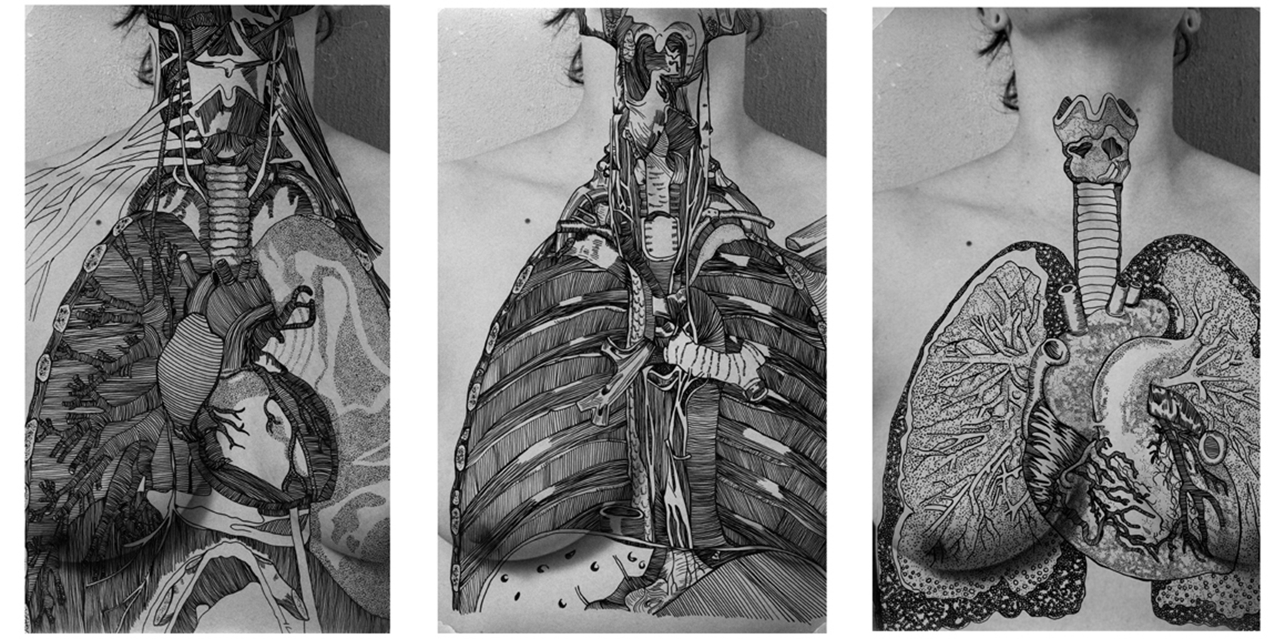"""""""Angela, Chests"""". 2011. 4, 5x7 Silver Gelatin with Ink Overlay."""