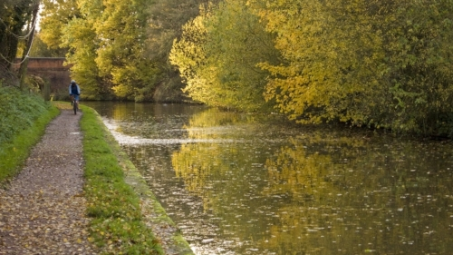 bike trail by river in autumn woodland