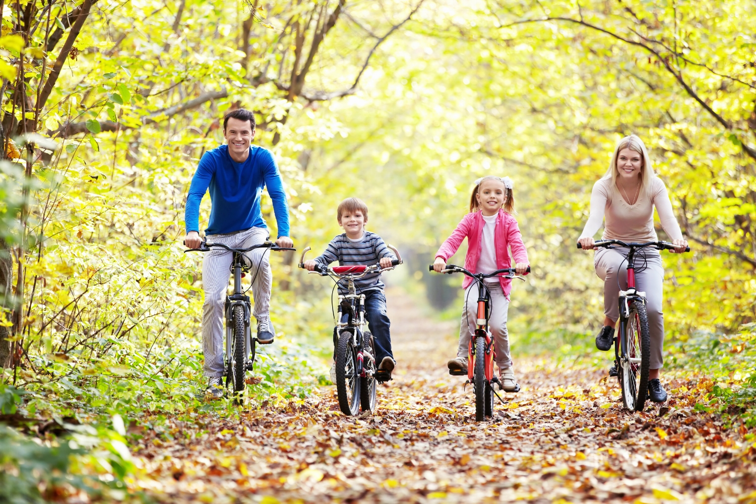 family park on bicycles in the fall