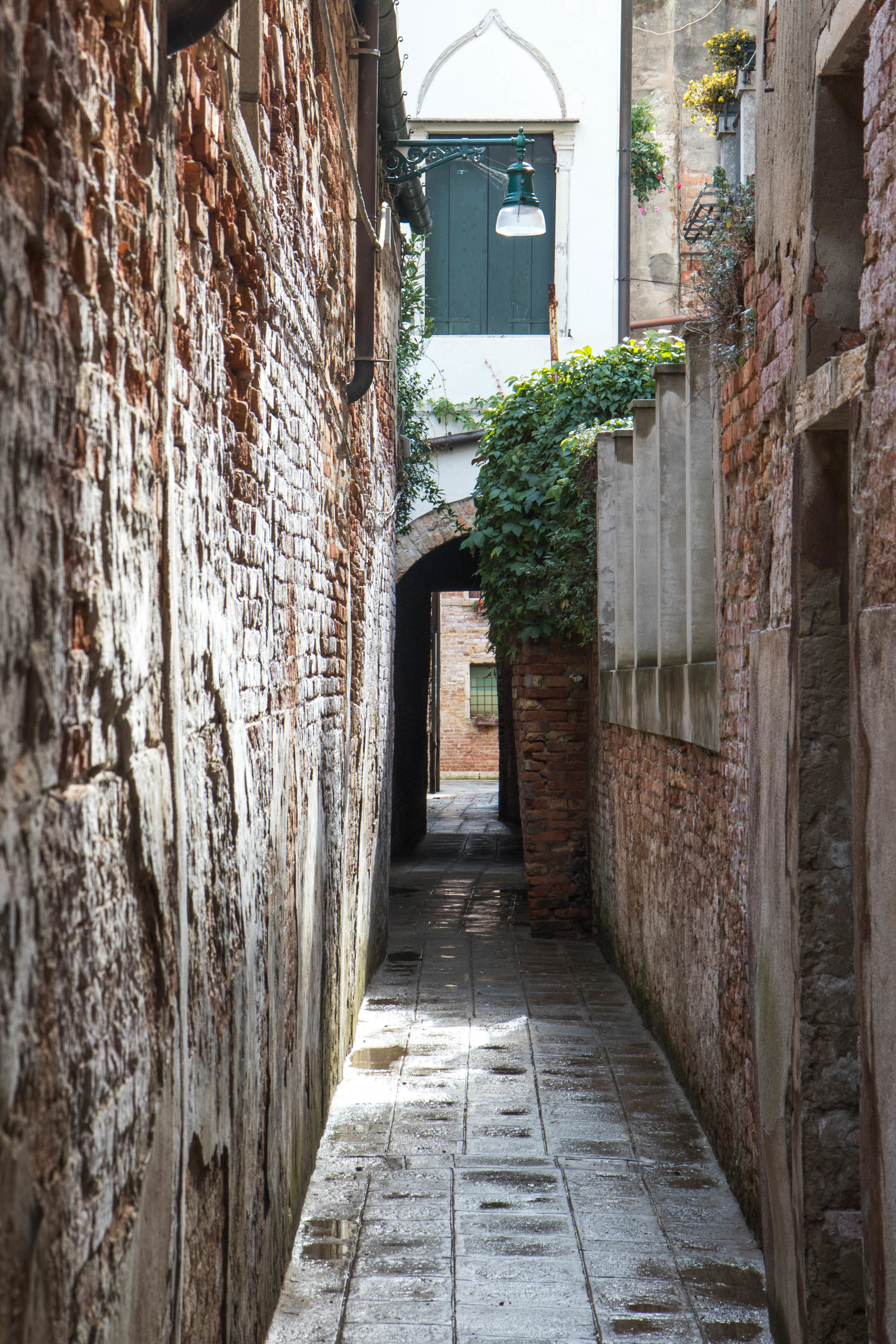 NarrowPassage1ShannonHammondPhoto.jpg