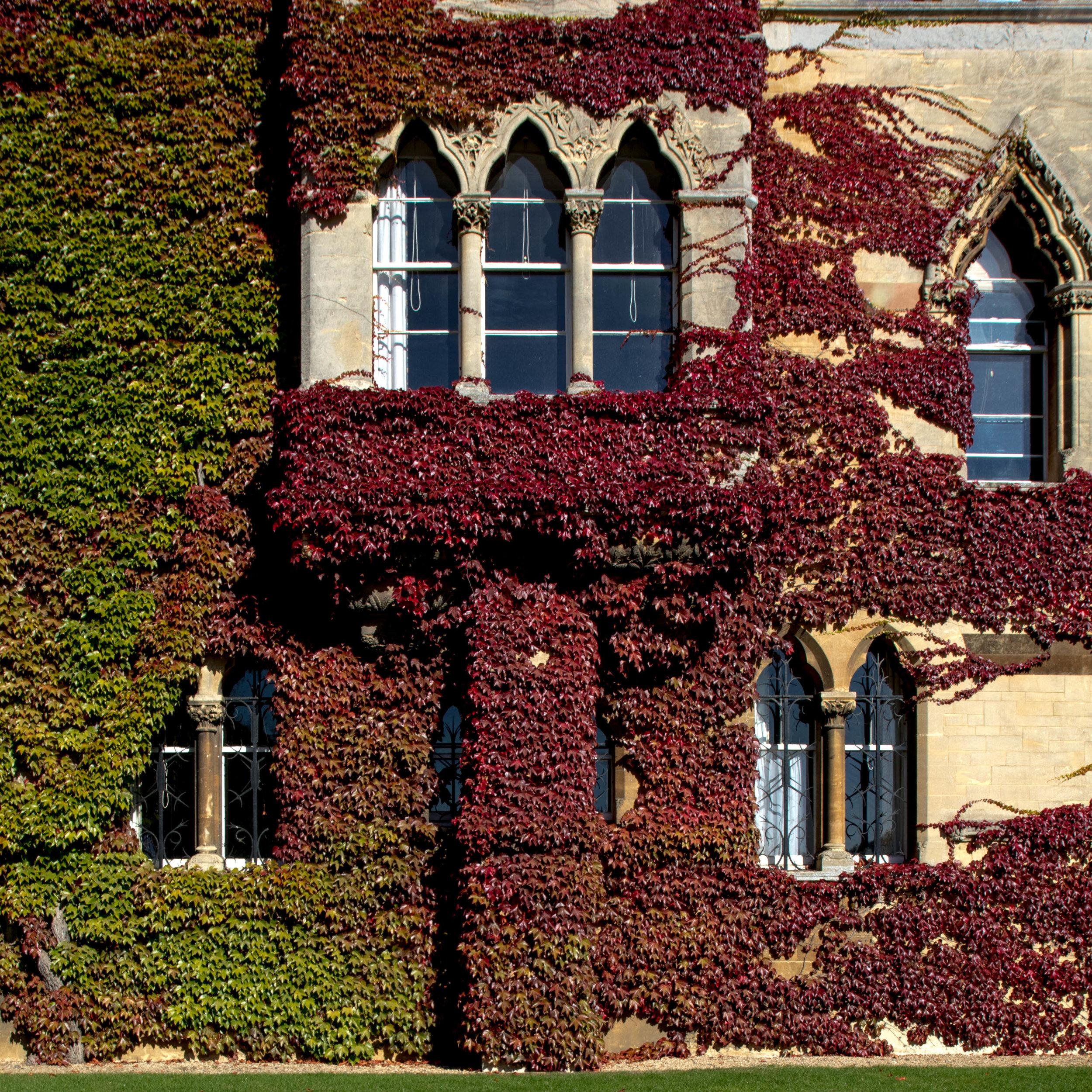 Oxford-ShannonHammondPhotography-4.jpg