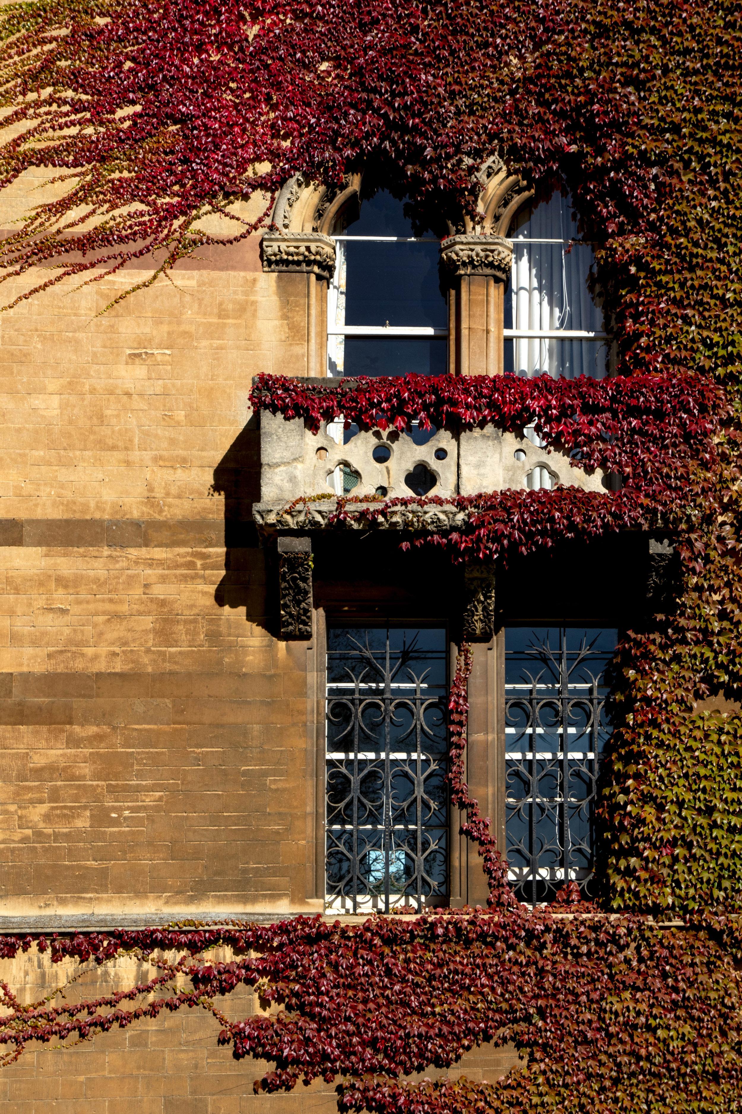 Oxford-ShannonHammondPhotography-3.jpg