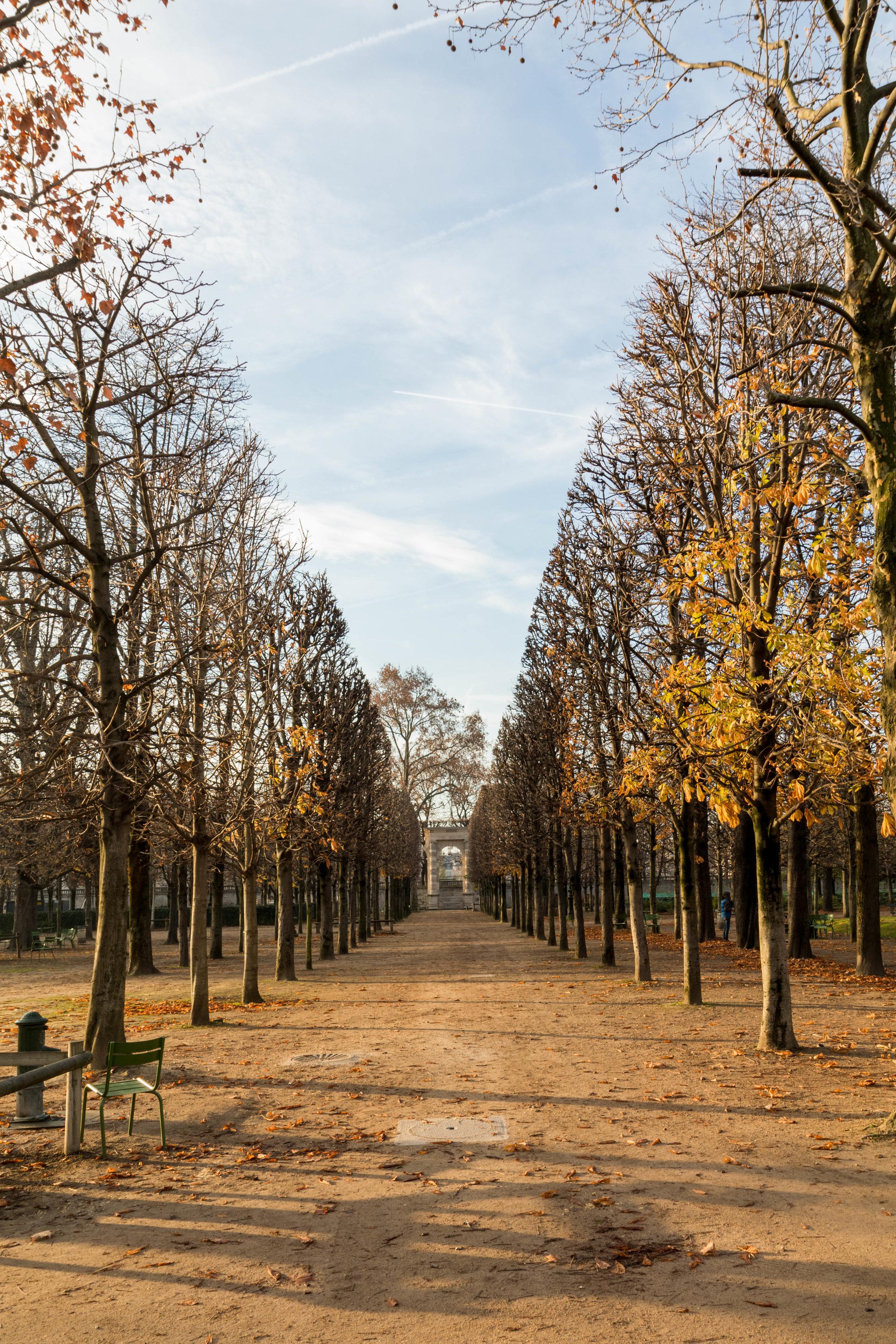 Paris Day 2 - Shannon Hammond Photography-5.jpg