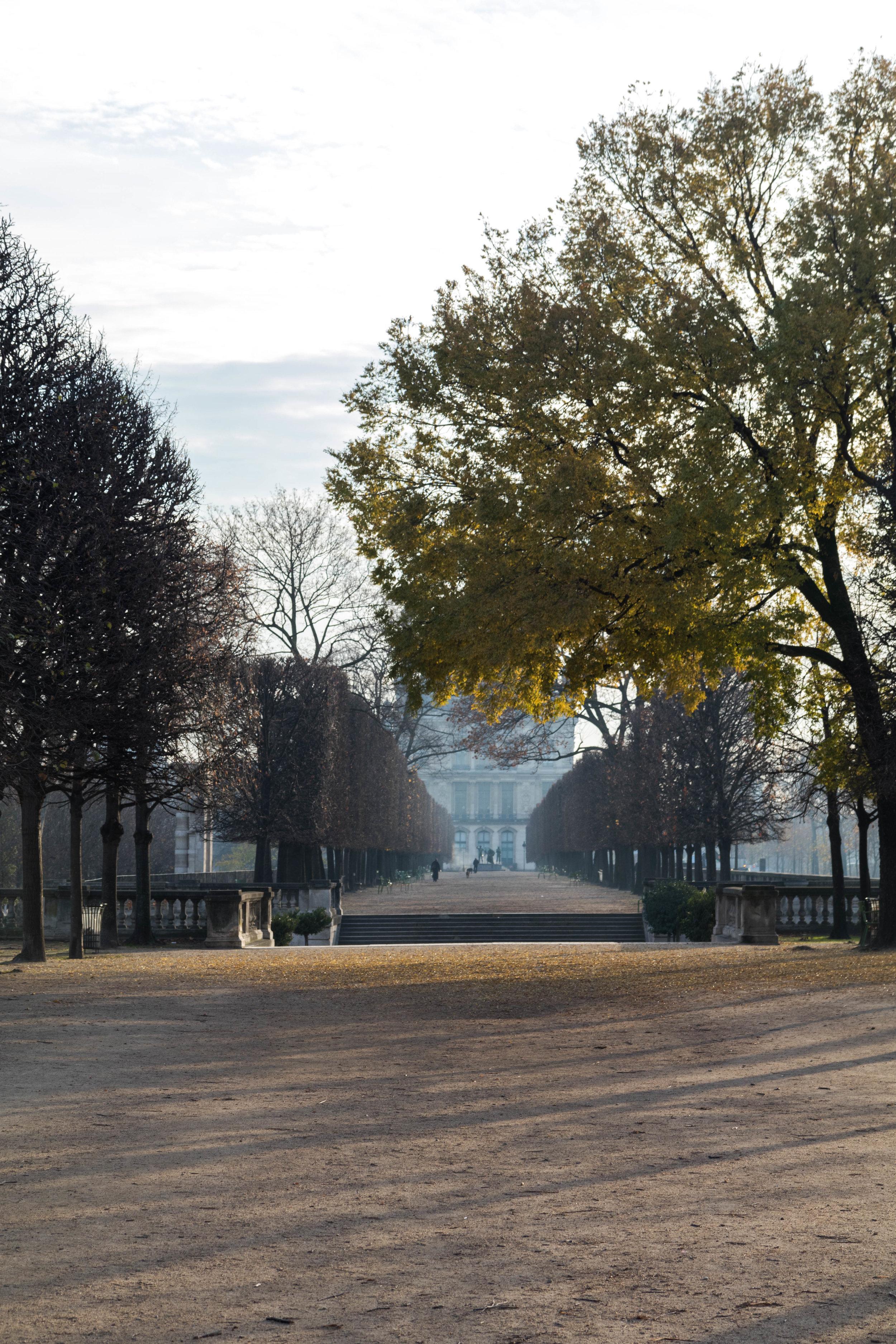 Paris Day 2 - Shannon Hammond Photography-8.jpg