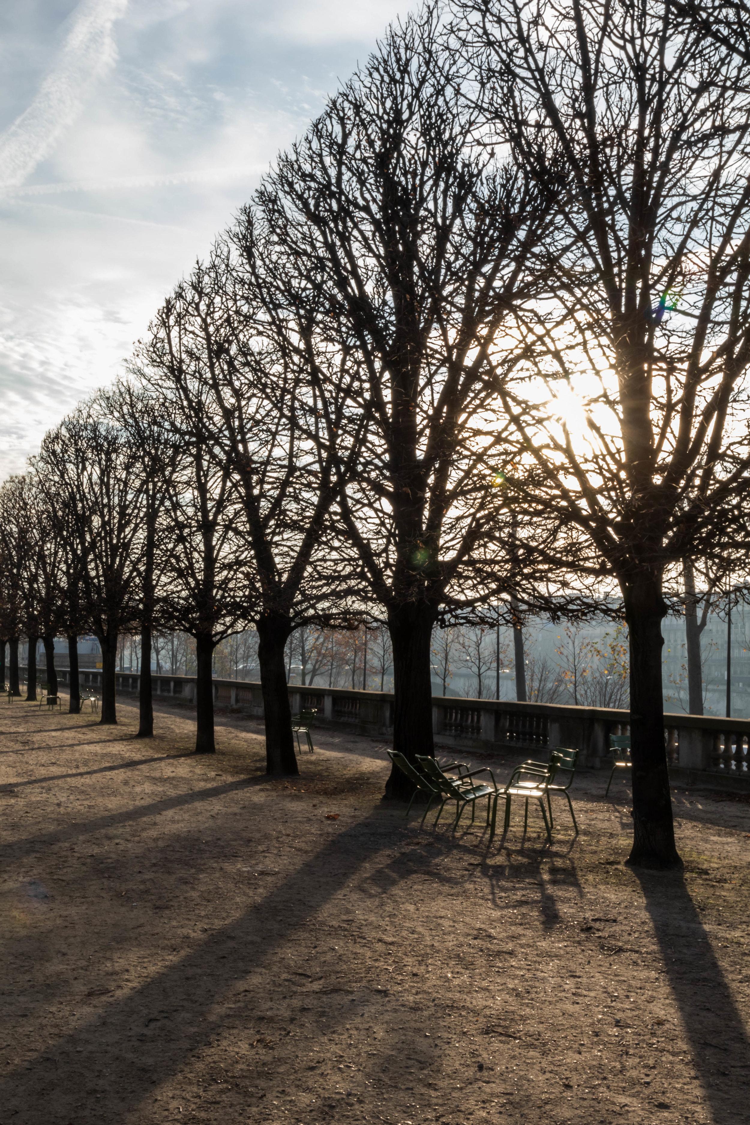 Paris Day 2 - Shannon Hammond Photography-10.jpg