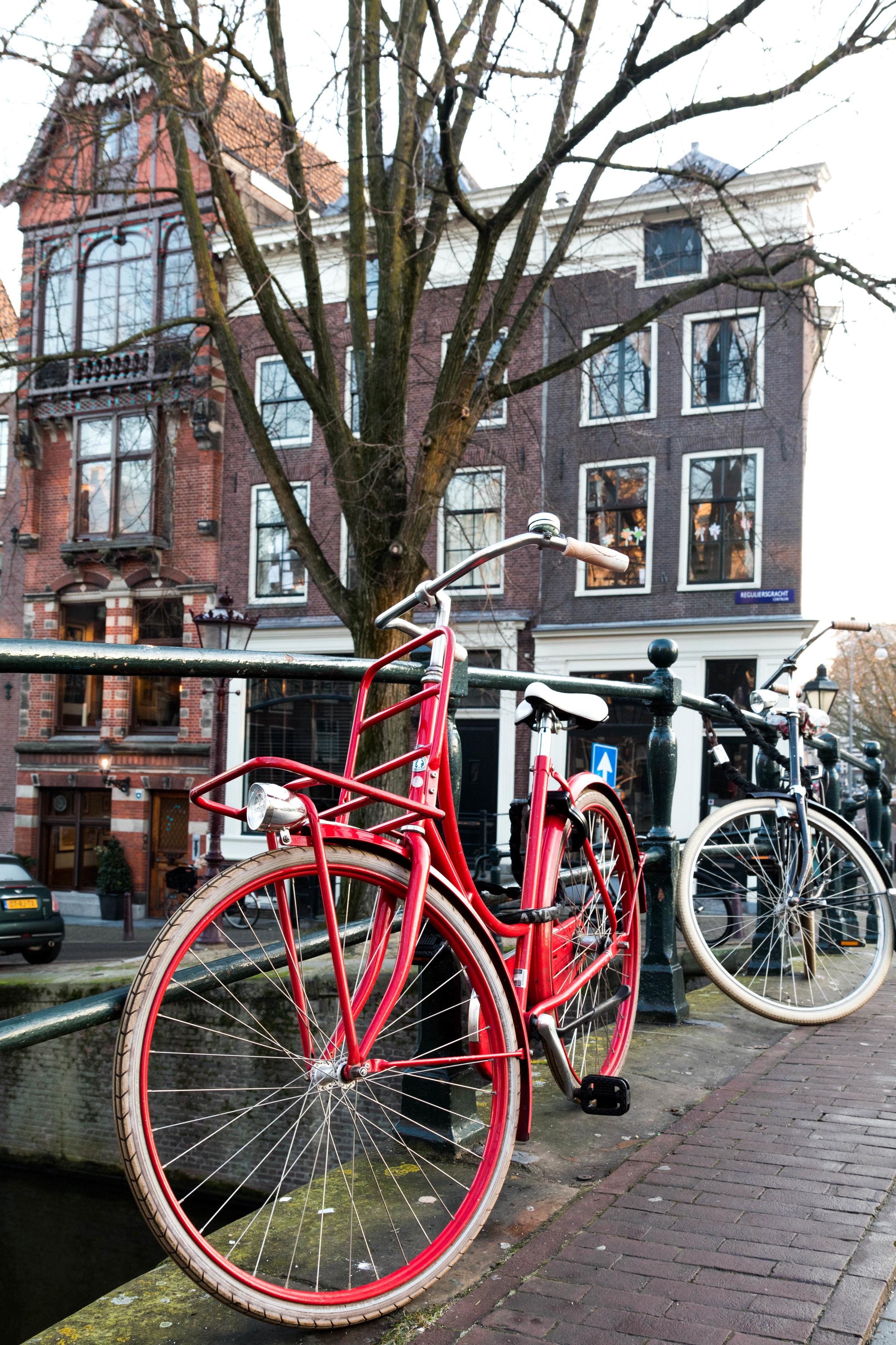 Amsterdam - Shannon Hammond Photography-45.jpg