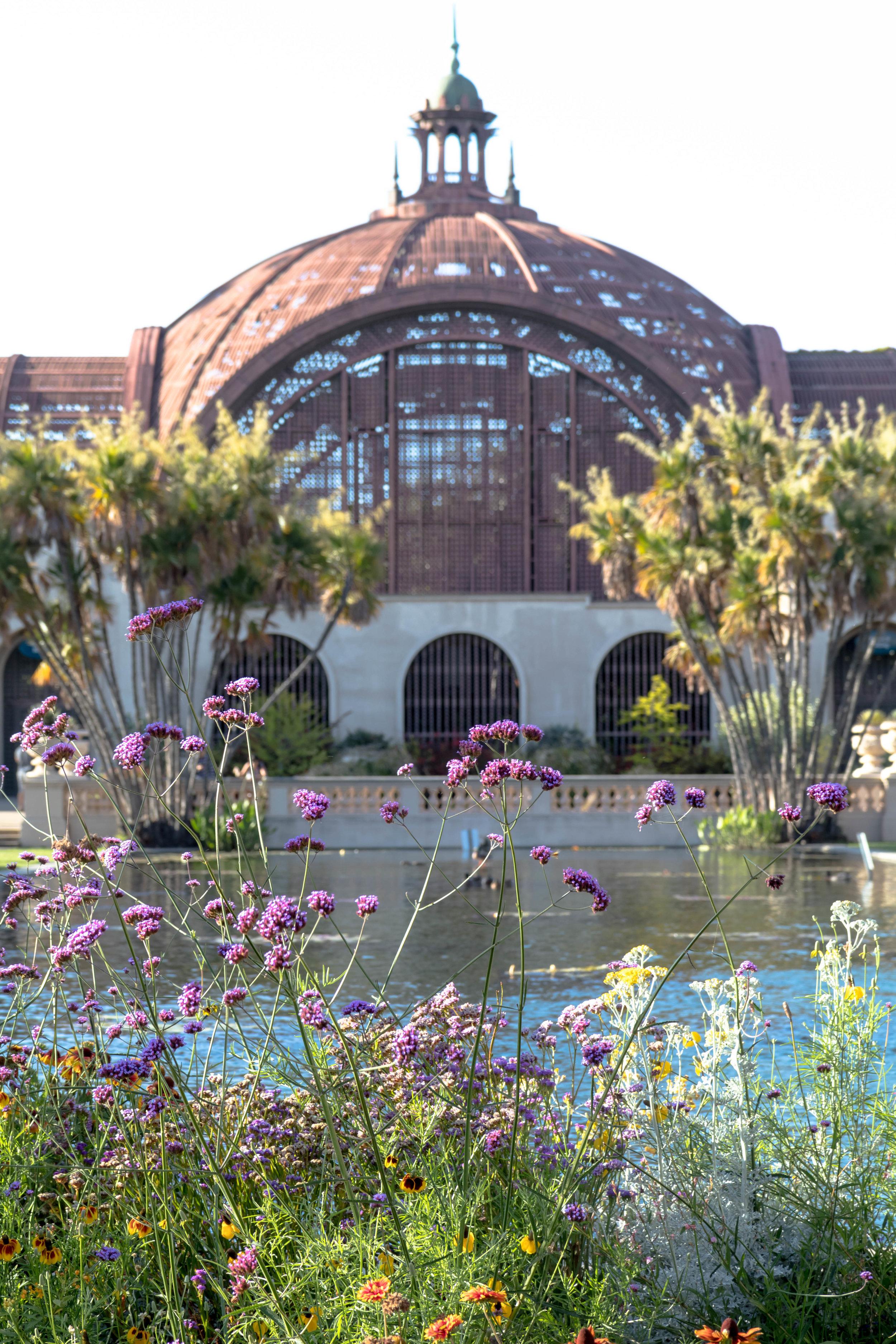 Summer in the exquisite Balboa Park.