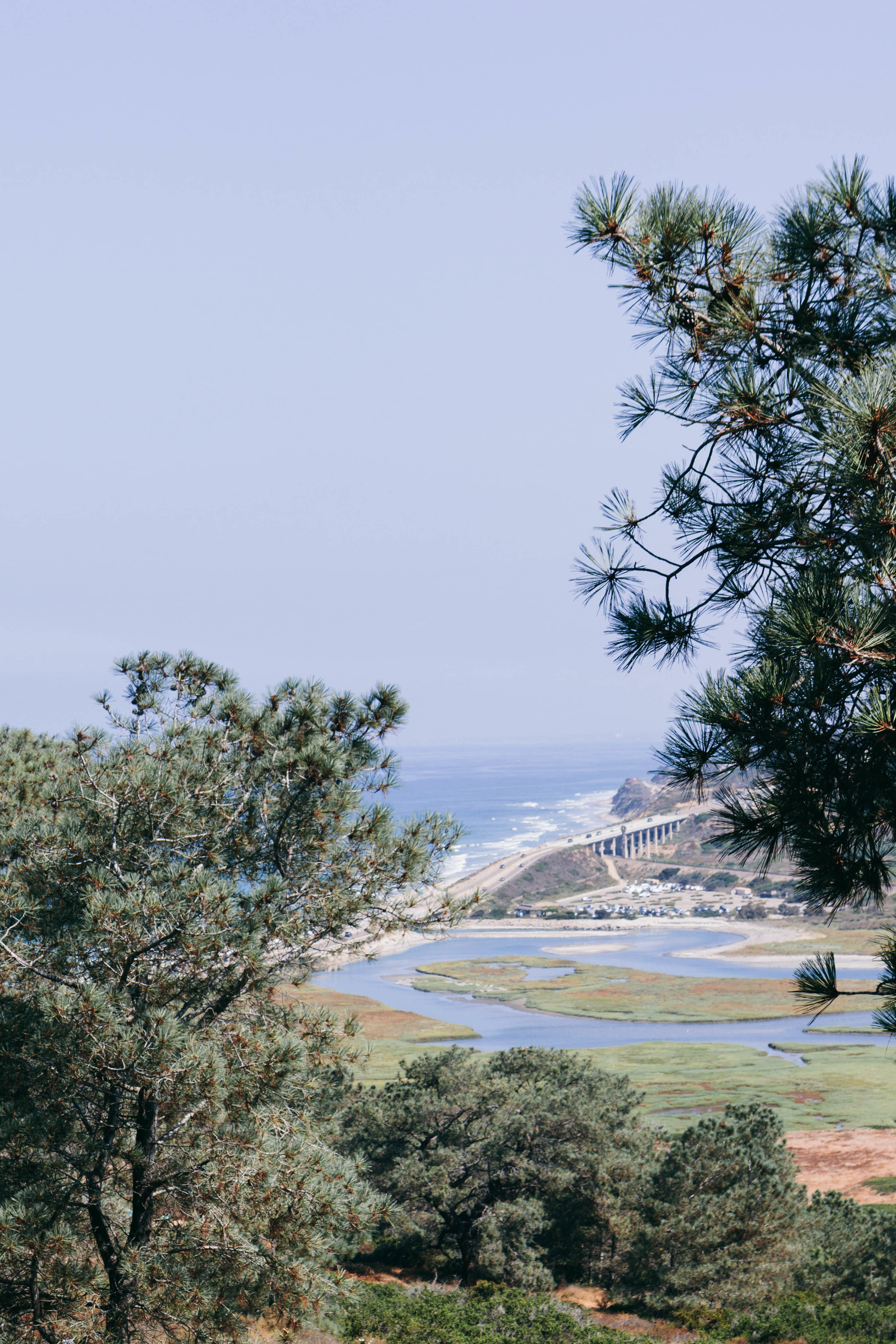 Shannon Hammond Photography - Coastal Hikes-0859.jpg