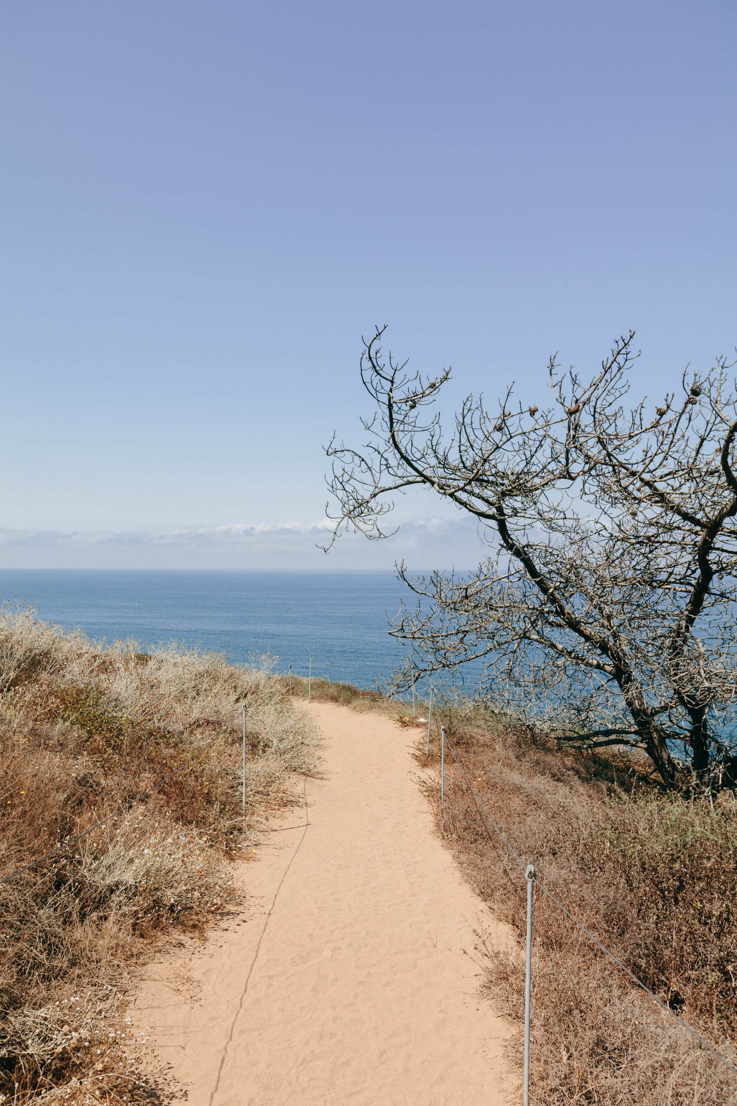 Shannon Hammond Photography - Coastal Hikes-0904.jpg