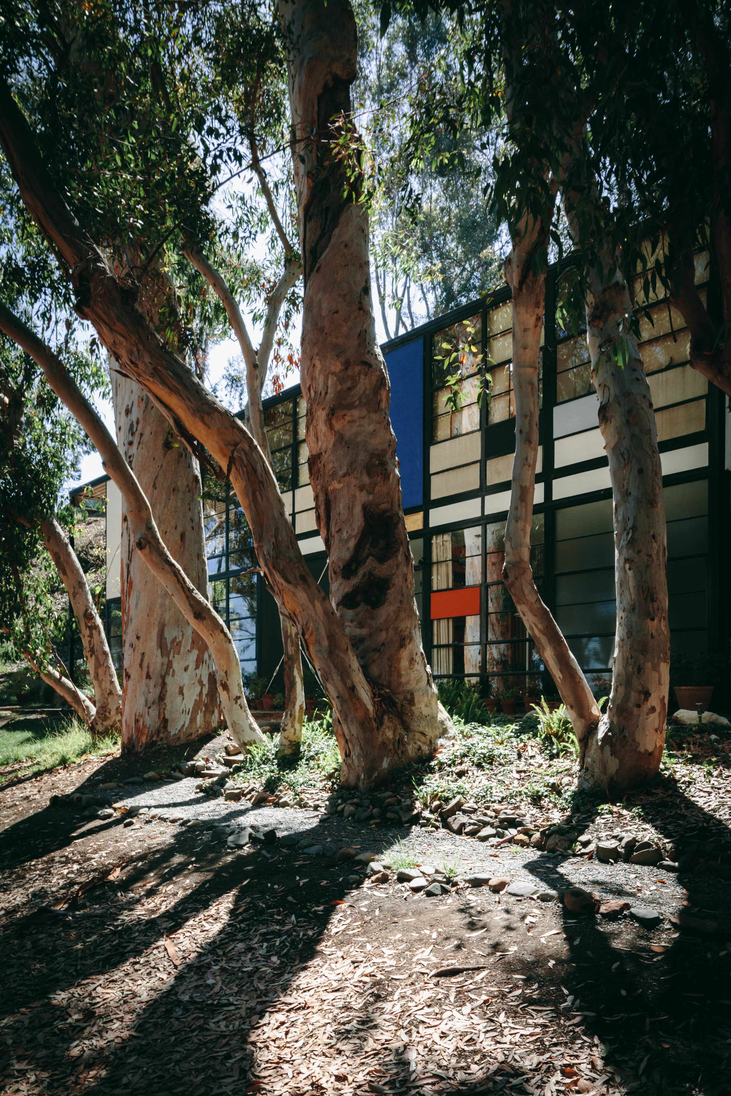 The Eames House, designed and lived in by iconic designers Charles and Ray Eames.