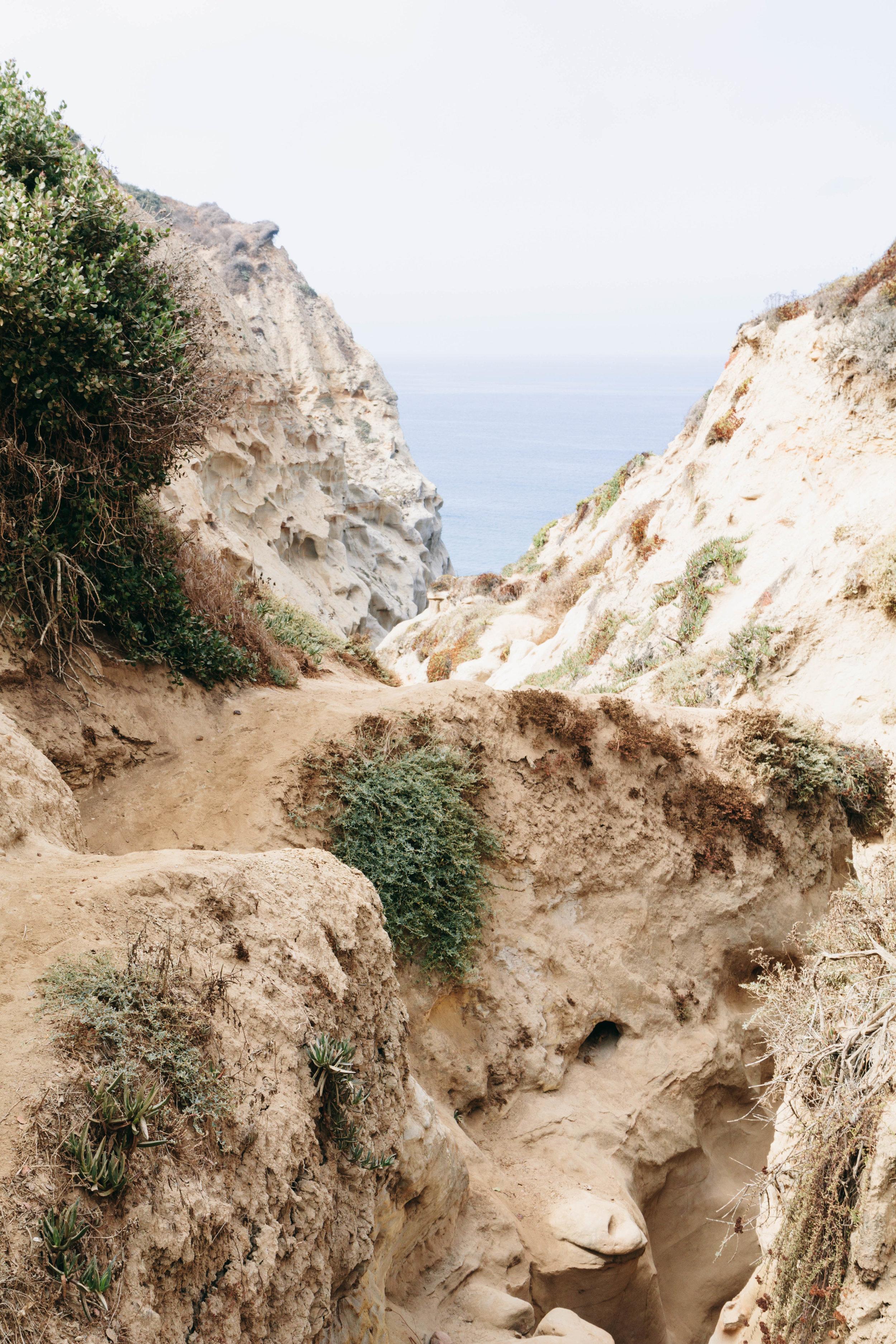 San Diego Hikes - Shannon Hammond Photography-7.jpg