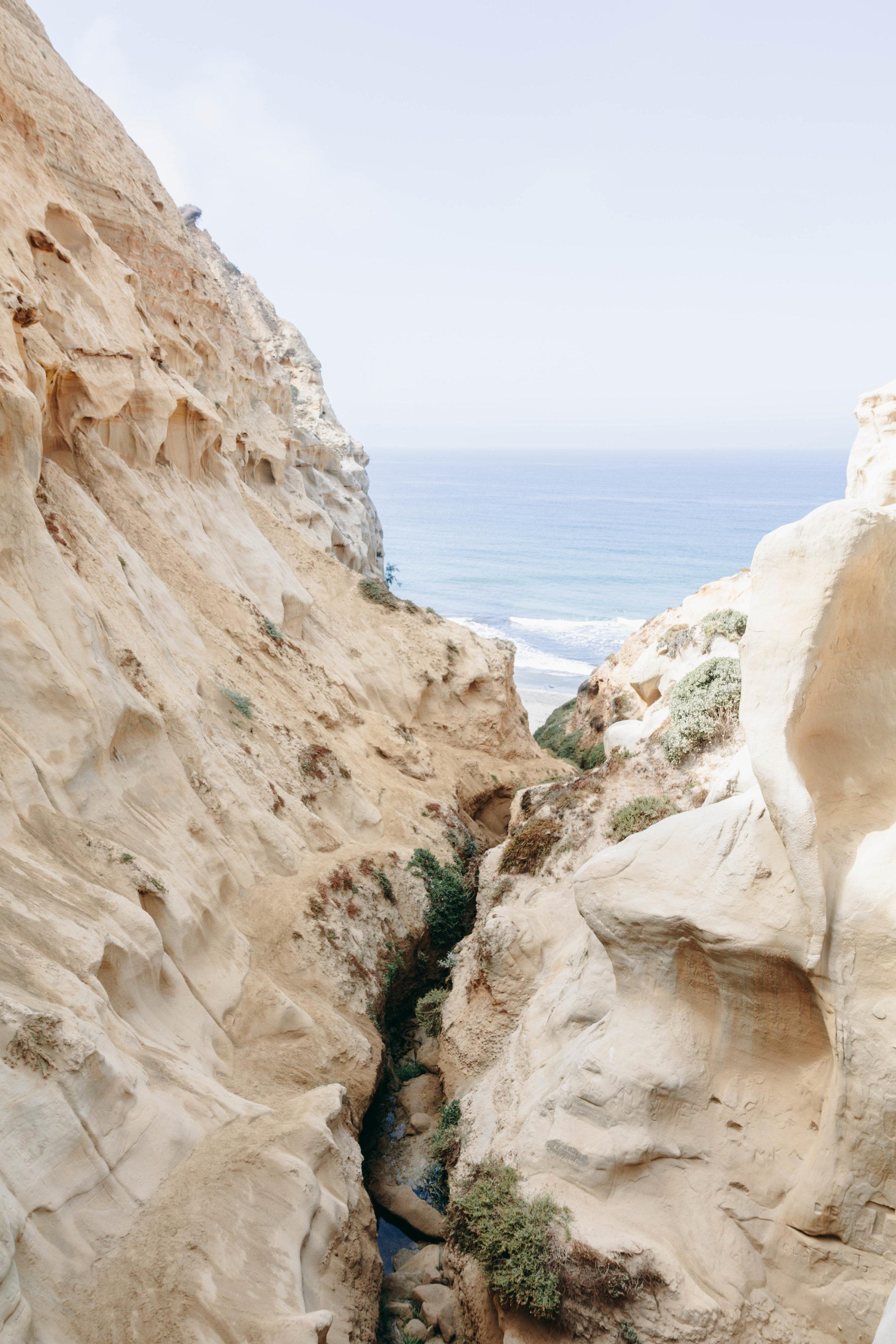 San Diego Hikes - Shannon Hammond Photography-16.jpg