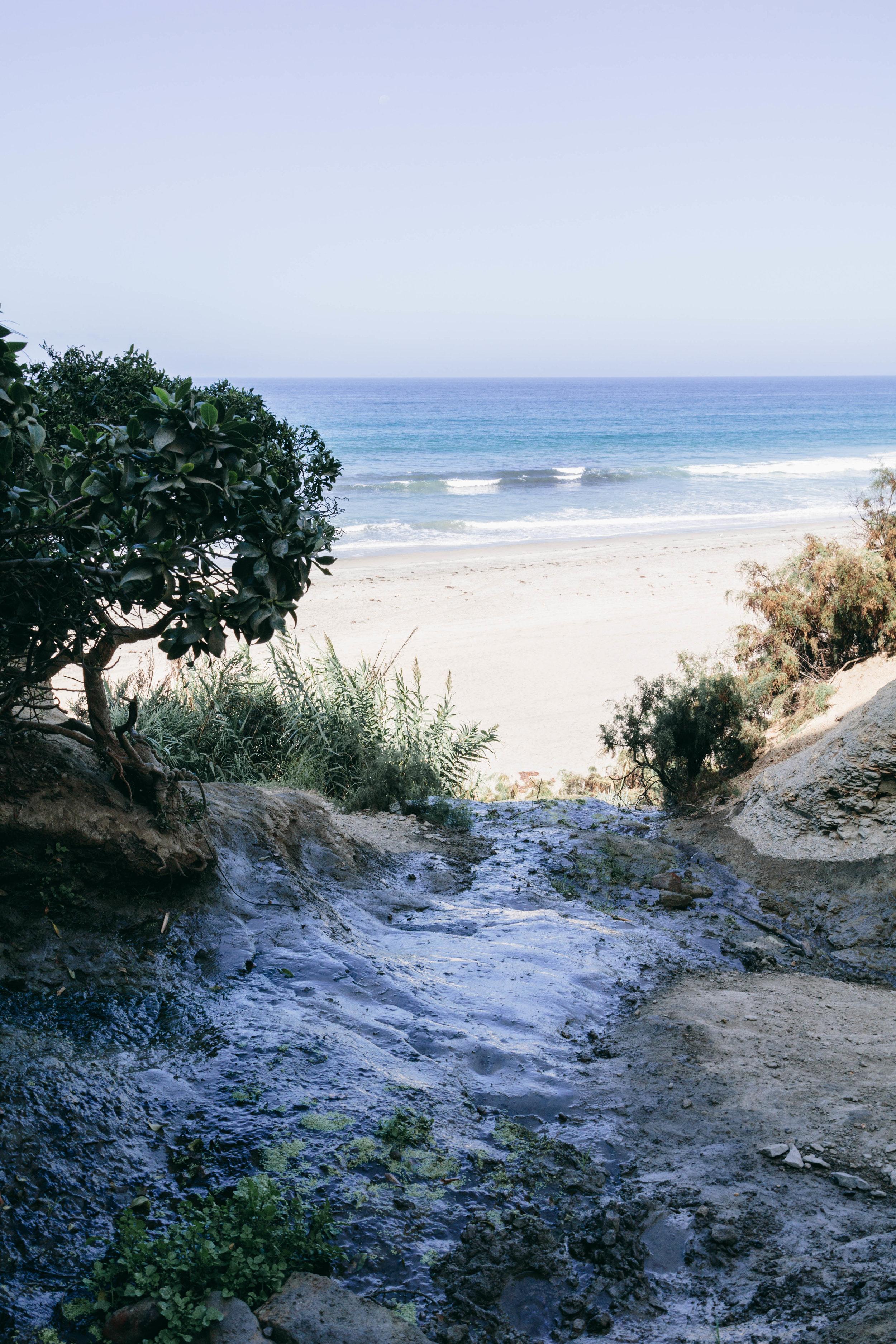 San Diego Hikes - Shannon Hammond Photography-23.jpg