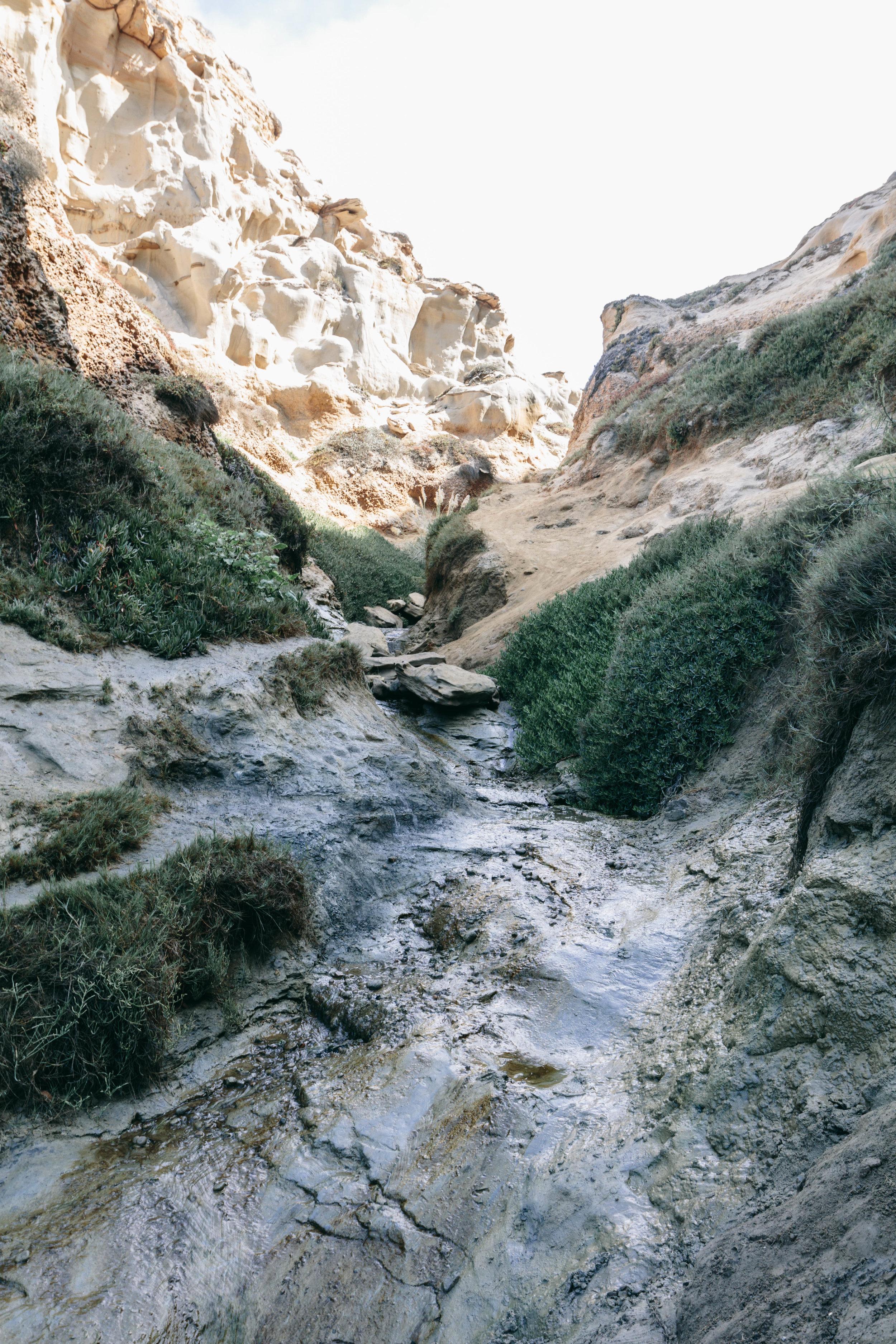 San Diego Hikes - Shannon Hammond Photography-22.jpg